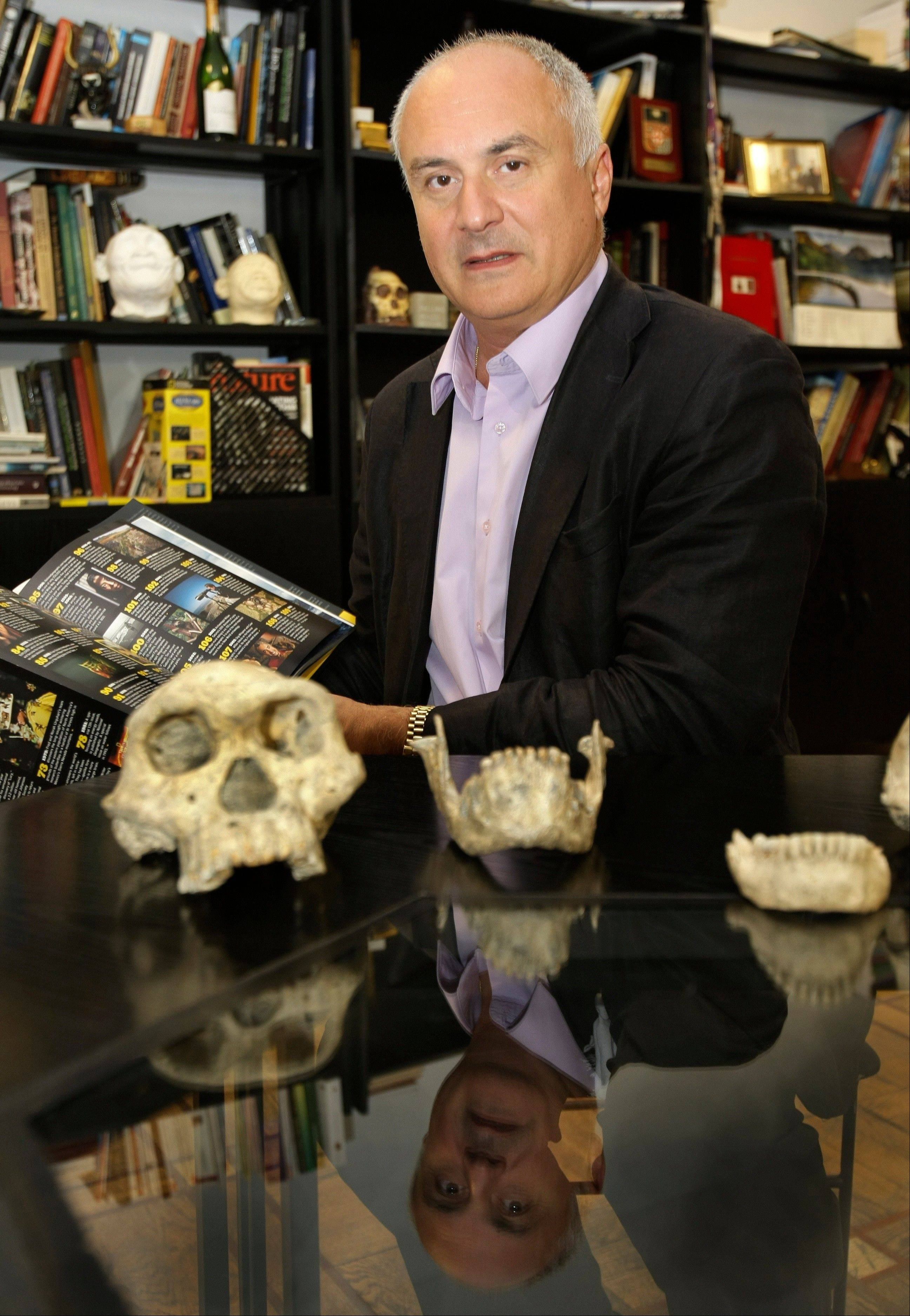 David Lordkipanidze, director of the Georgia National Museum, displays the ancient skull and jaws of a pre-human ancestor at the National Museum in Tbilisi, Georgia. The discovery indicates the human family tree may have fewer branches than originally thought.