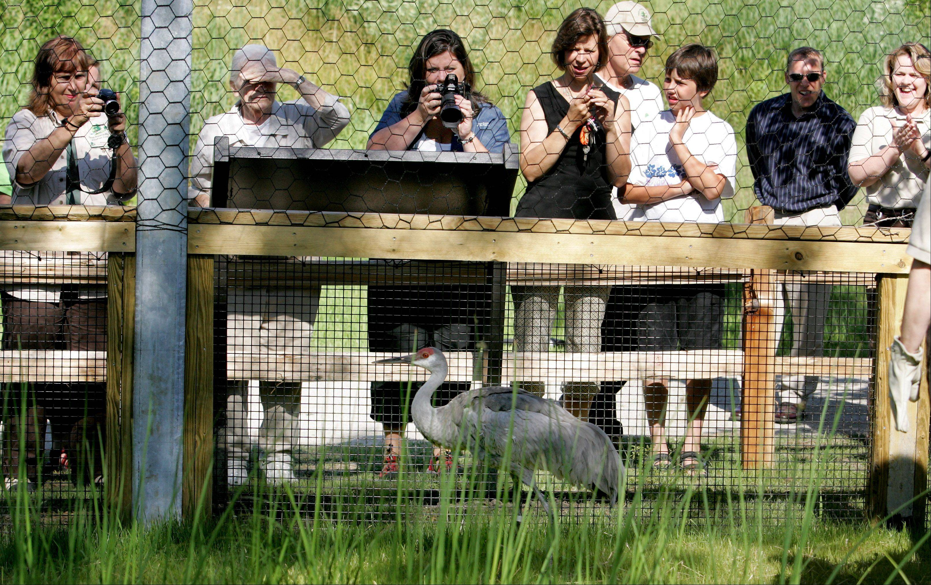 Improvements begin at Willowbrook Wildlife Center