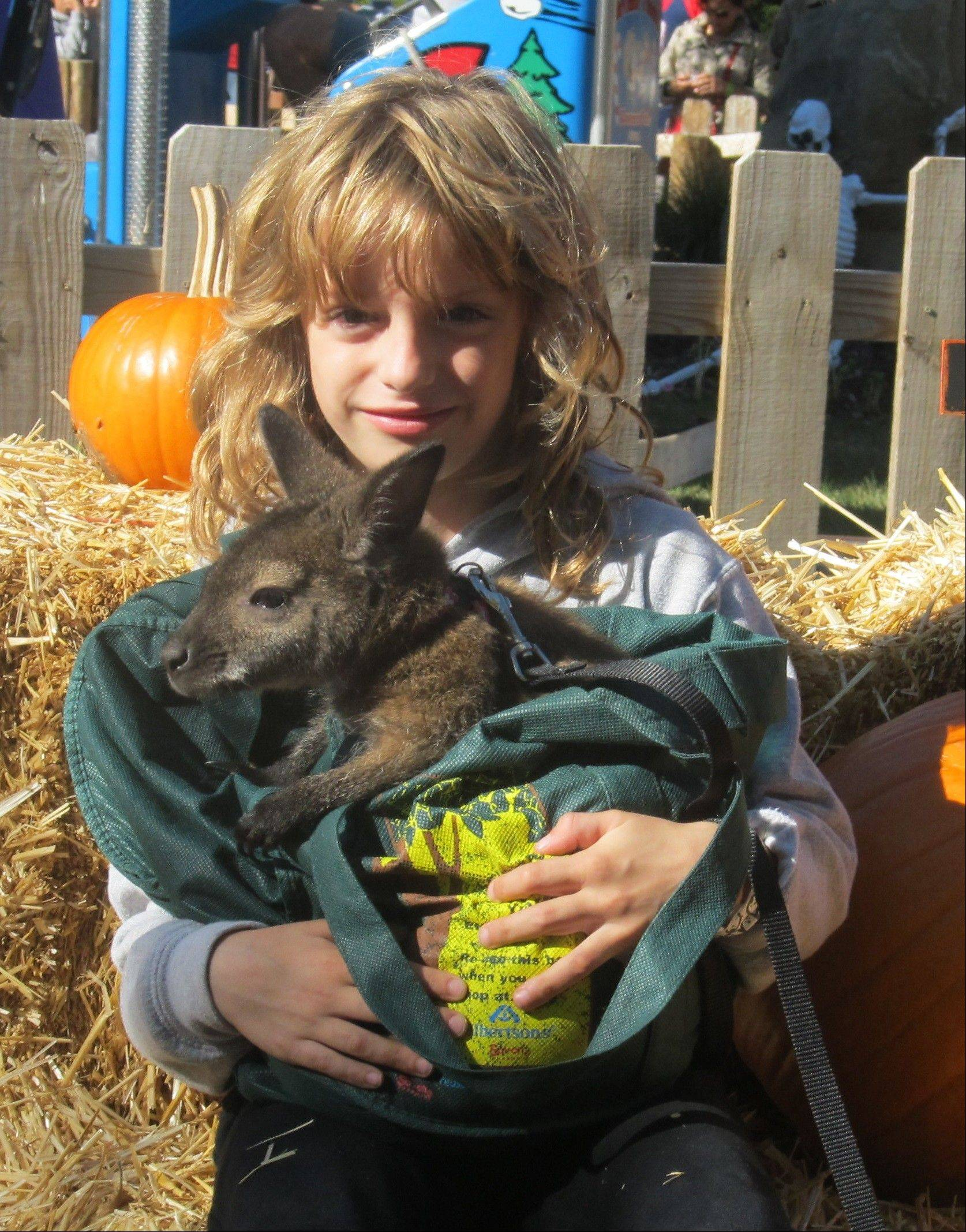 A petting zoo is one of the attractions at Harvest Fest Days at Santa's Village in East Dundee.