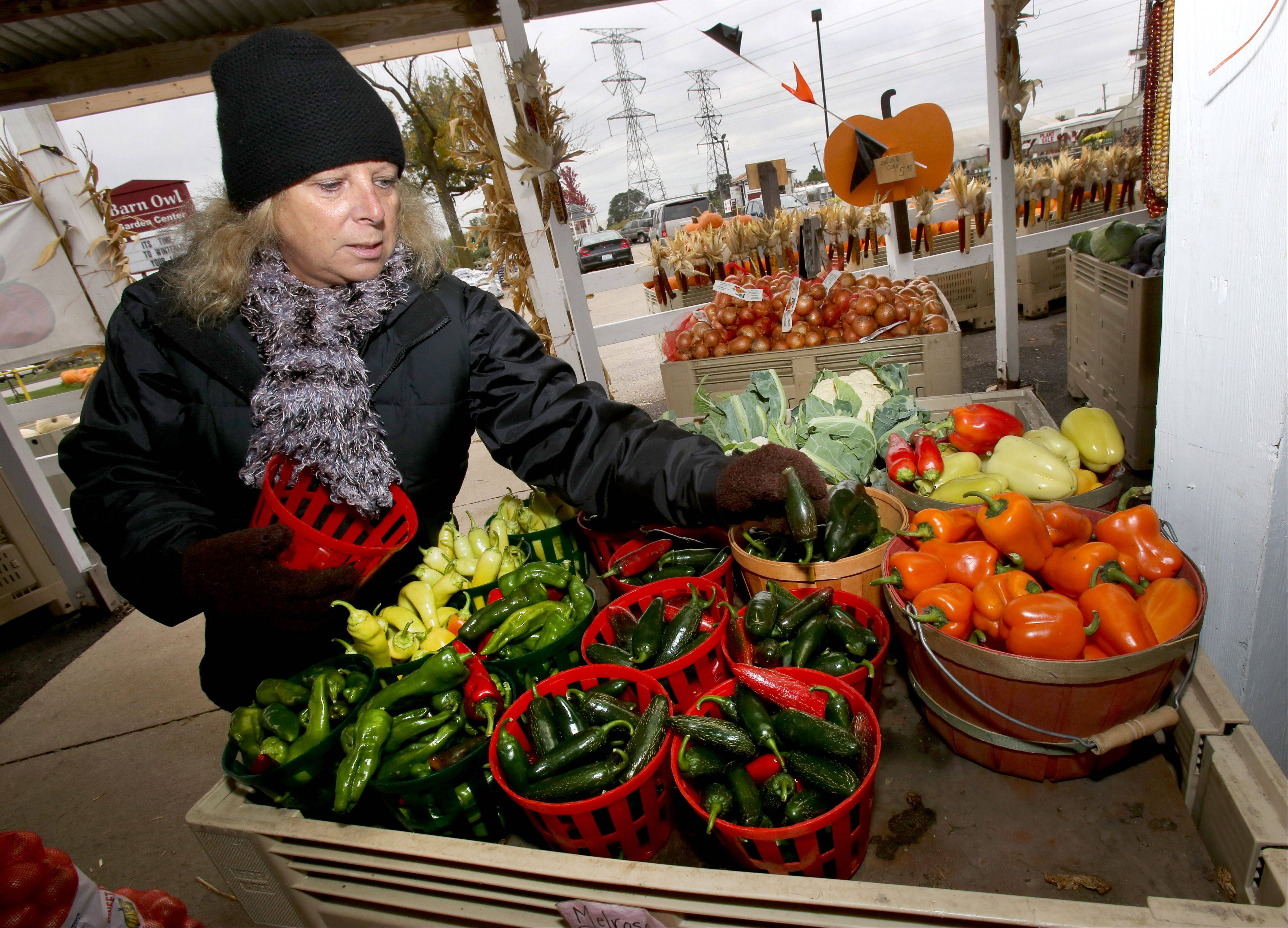 """You couldn't get it any fresher unless you grew it yourself,"" said Donna Smits, of The Farm in Carol Stream. The family owned business is celebrating its 50th year selling fresh seasonal produce in DuPage County."