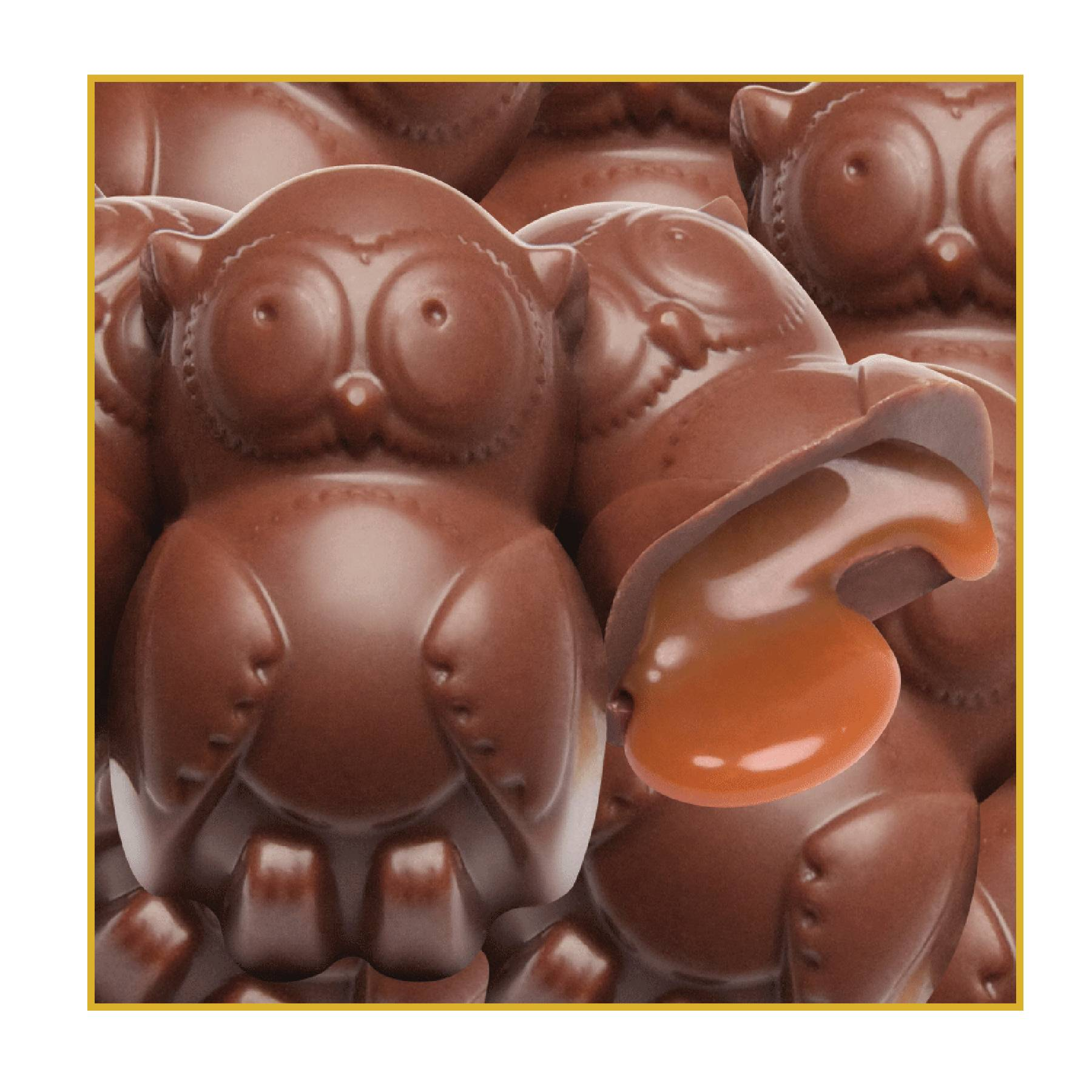 Dulce De Leche Owls join the product lineup for GSNI's 2013 Fall Product Program.