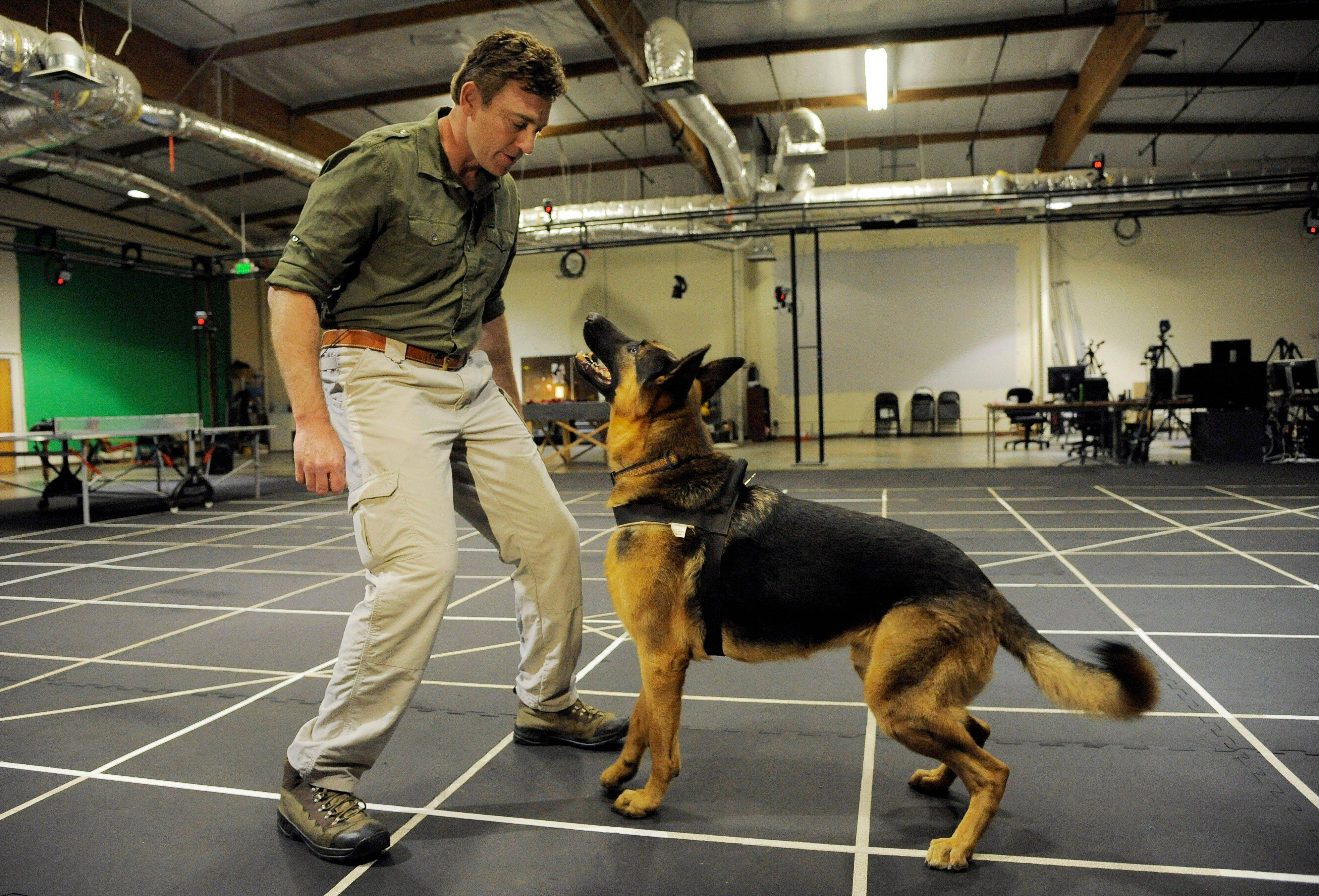 "Trainer Chris Connell gives prompts to his dog Rugger on a motion-capture stage at Neversoft Motion Capture Studio, in Los Angeles. After footage released earlier this year revealed that ""Call of Duty: Ghosts"" would feature a four-legged soldier, the Internet uniformly wagged its tail in anticipation."