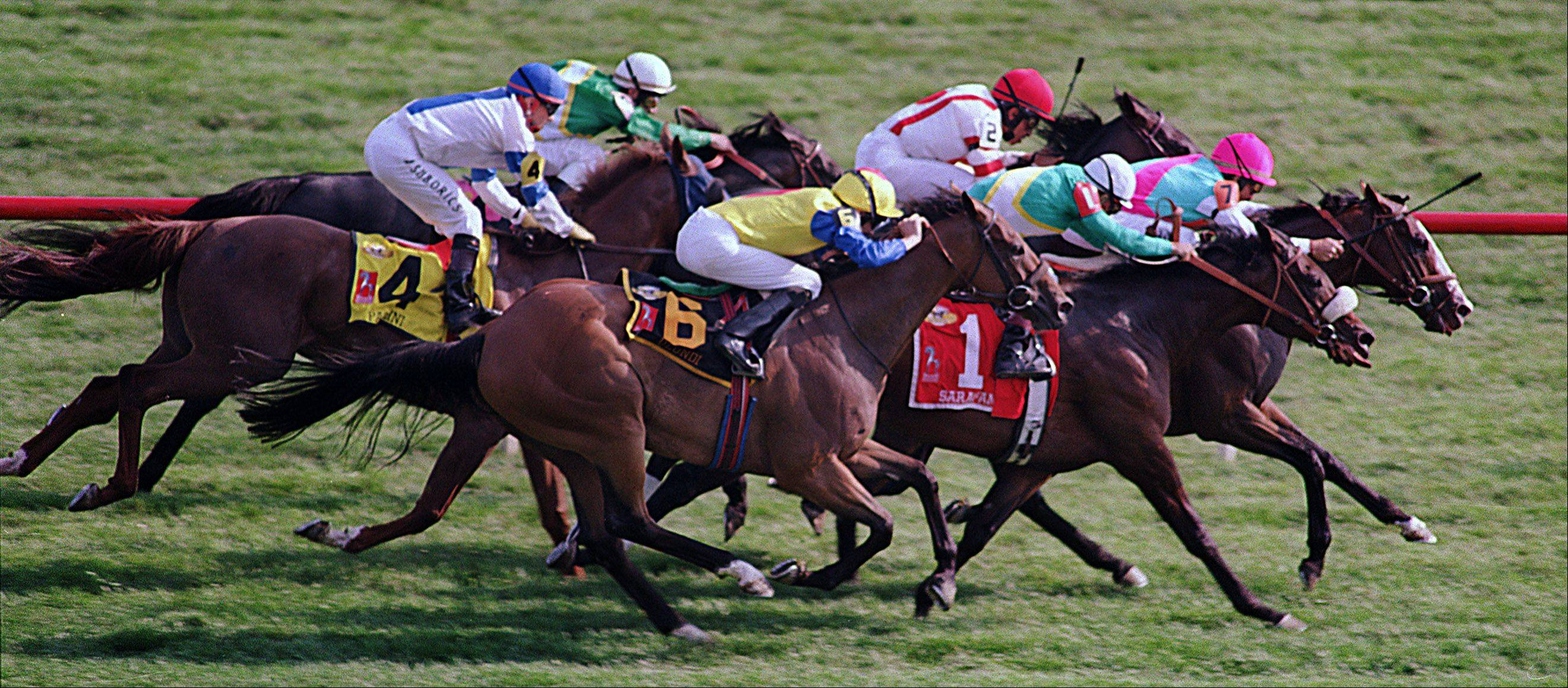 Arlington International Racecourse needs lawmakers to once again approve betting online or else its racing season could be cut.