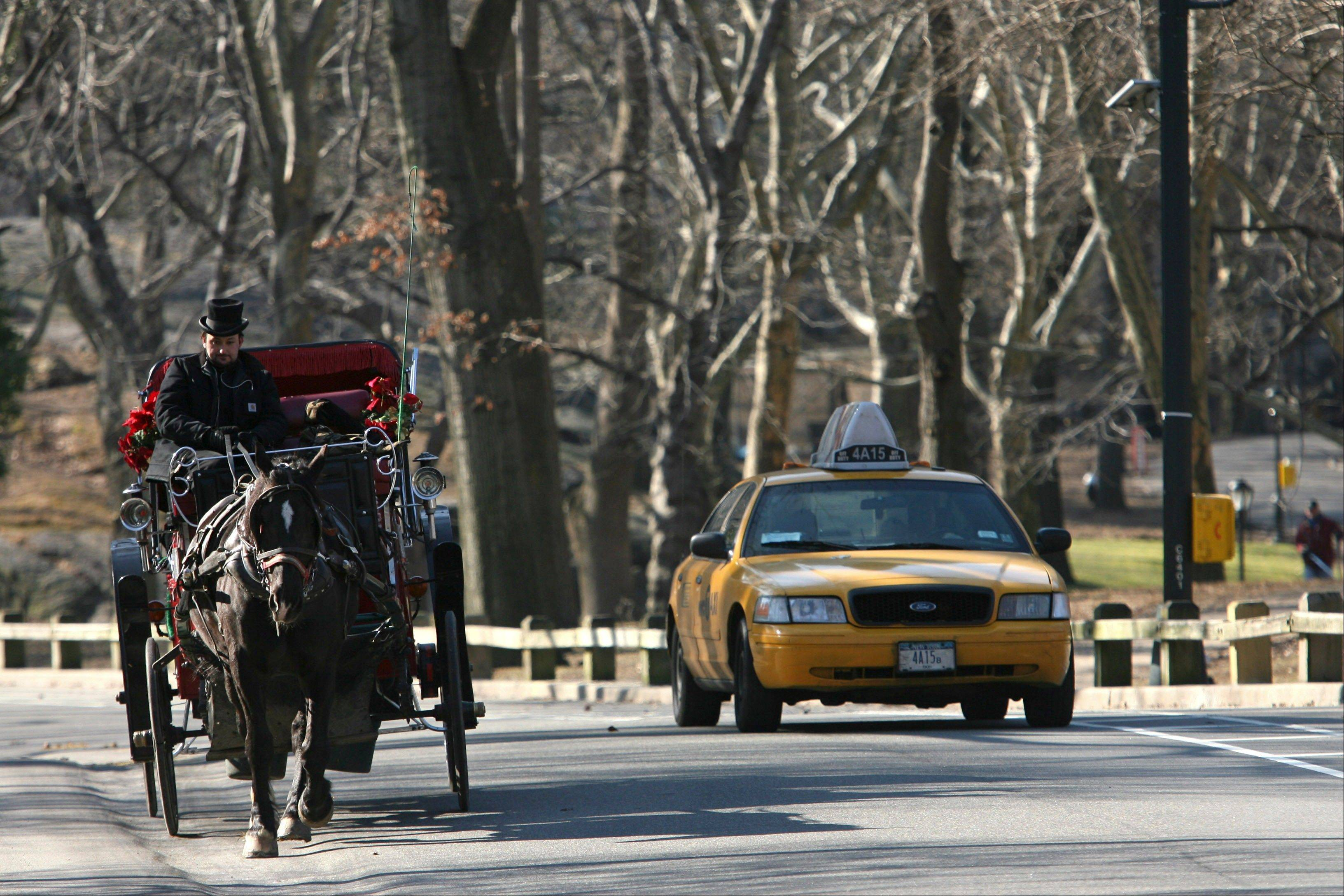 A horse-drawn carriage shares the road with a taxi in New York's Central Park. Bill de Blasio, who is leading in the polls as he is seeking the New York City Mayorís Office, supports a plan to replace the horses with old-timey electric cars hired to take tourists on slow-speed jaunts around Central Park.