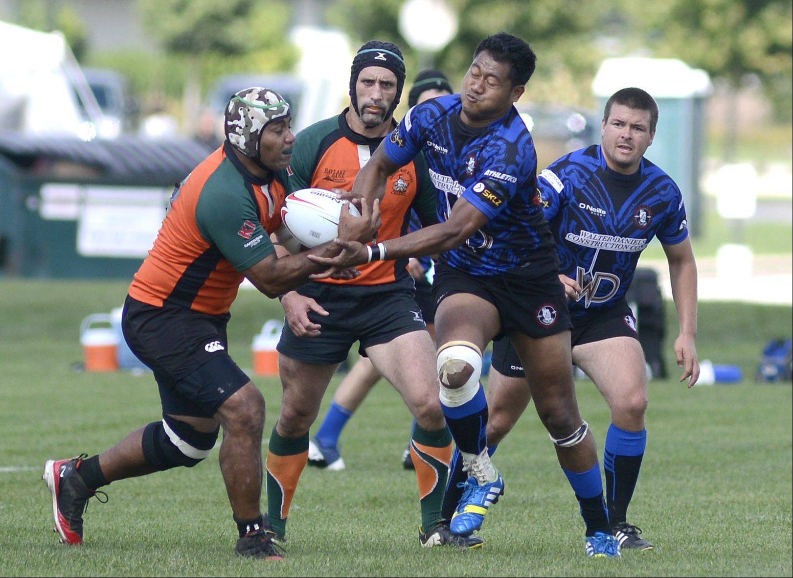 Lafitaga Lealaua, known as Lafi, center right, tries to wrestle the ball away from the Green Bay Celtics during a match at James O. Breen Community Park in St. Charles. Lealaua, who lives in Elgin, has been a member of the Fox Valley Maoris Rugby Football Club for five years, joining soon after coming to the U.S. He's been playing the sport for 25 years, starting when he was just 5.