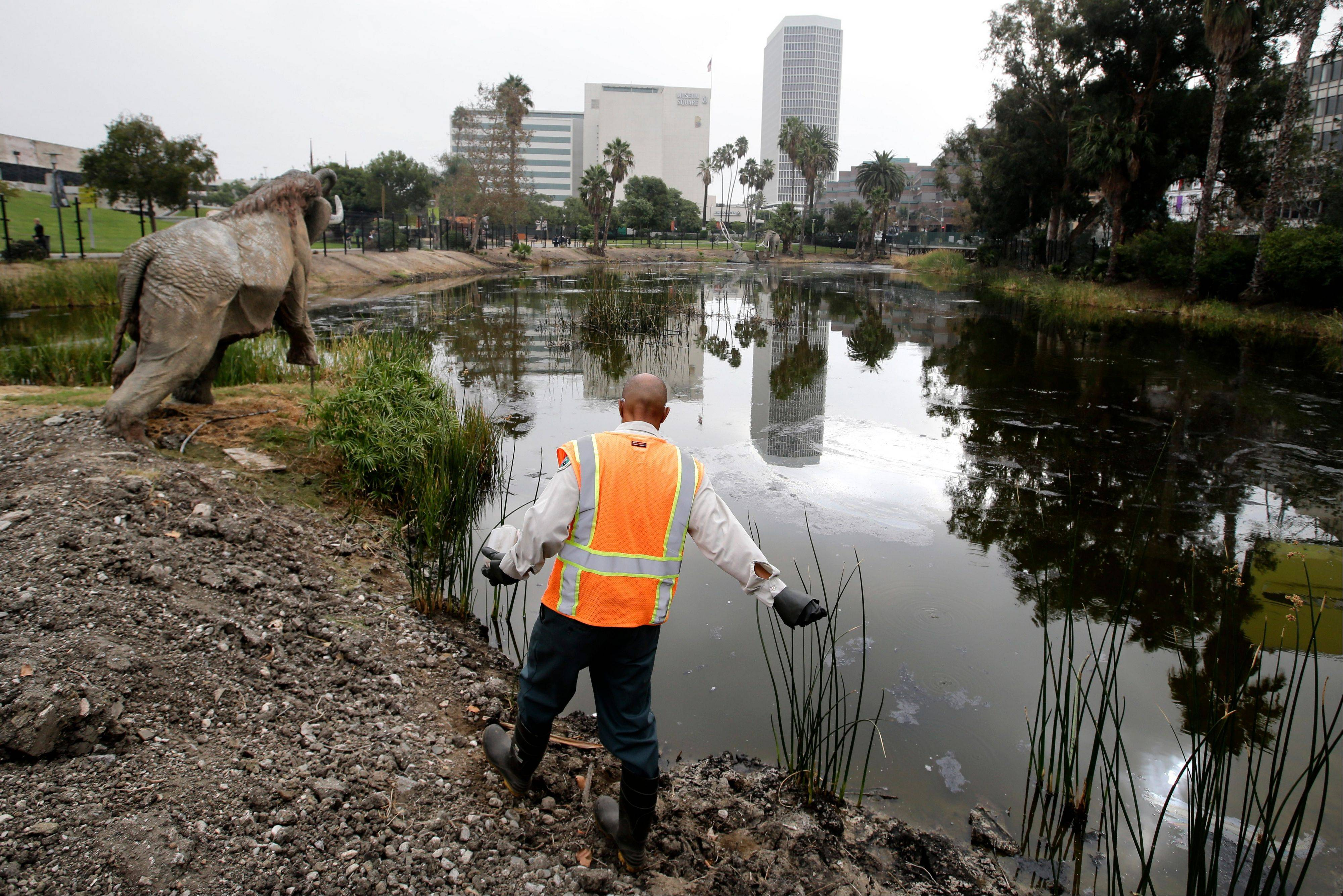 Victor Ball sprinkles mosquito repelling granules along Lake Pit outside the George C. Page Museum at the La Brea Tar Pits on Wednesday in Los Angeles. On Monday, the museum celebrates a century of excavation at the La Brea Tar Pits, considered the richest and most diverse collection of Ice Age fossils.