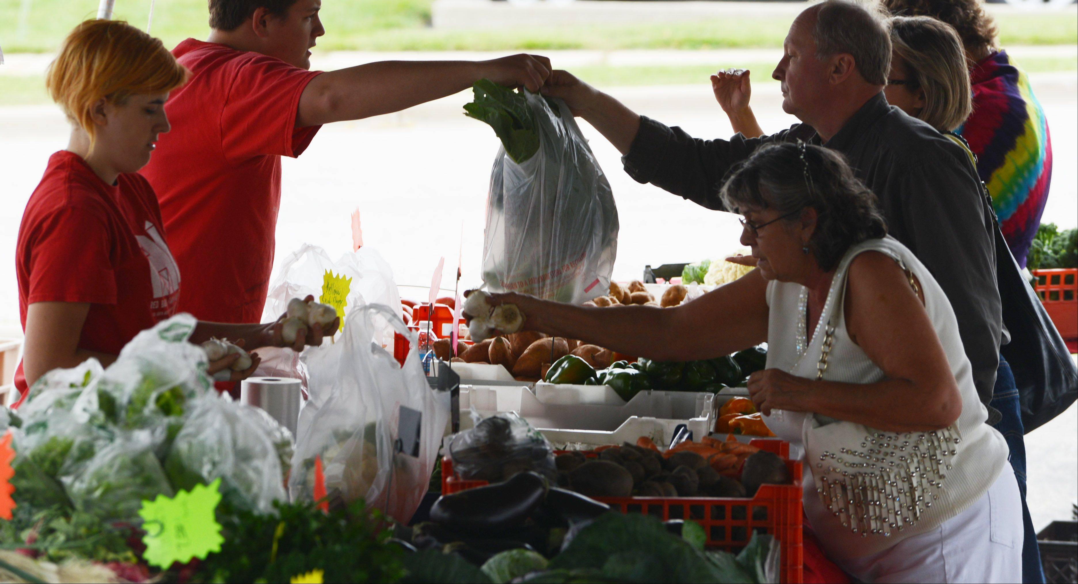 Shoppers at the Lake Zurich farmers market pick out fresh vegetables in Paulus Park.