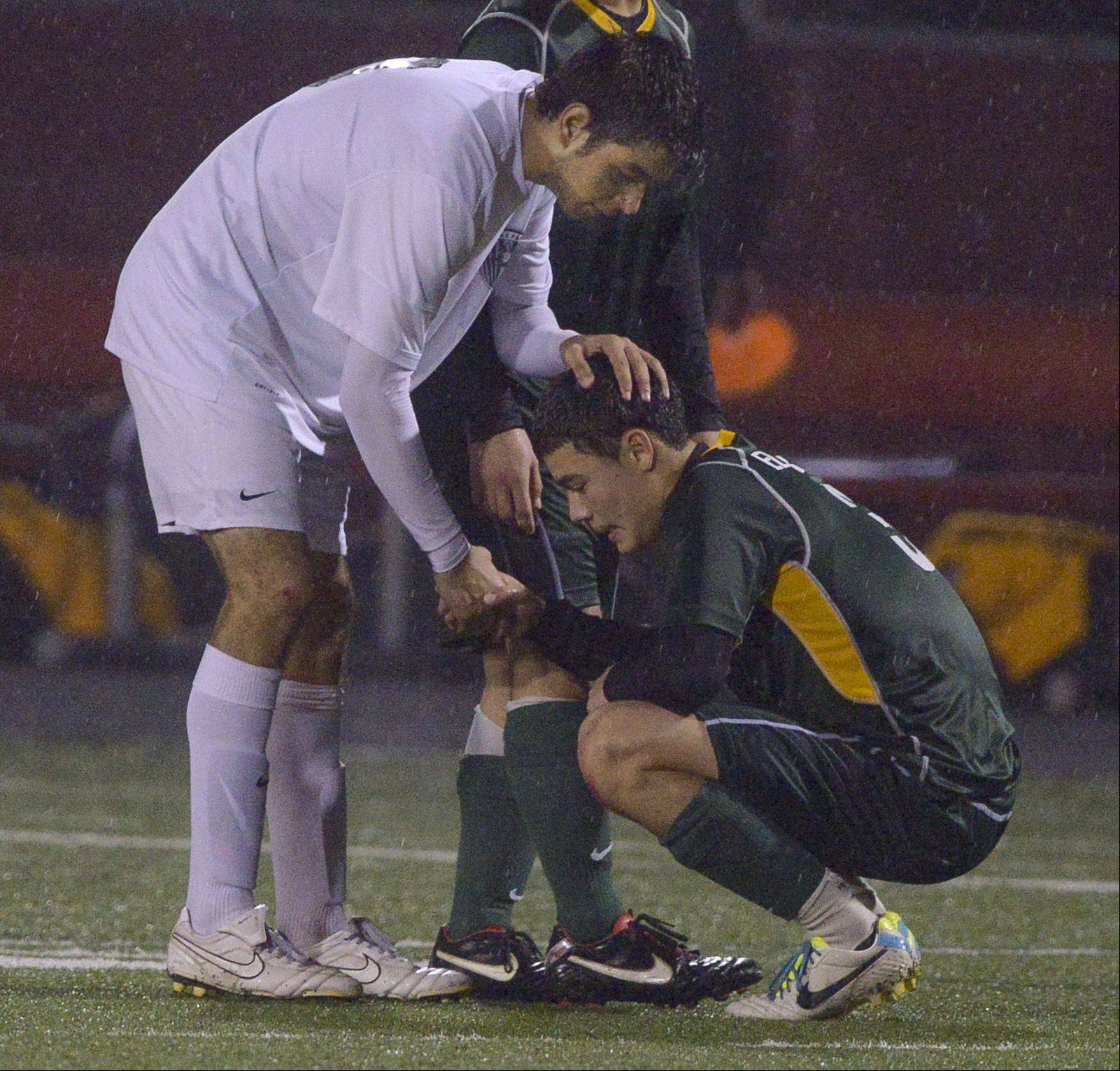 Carlos Torres of Lake Park consoles Ivan Corona of Elk Grove after Lake Park defeated Elk Grove 2-0 during the Class 3A Schaumburg sectional semifinals Wednesday.