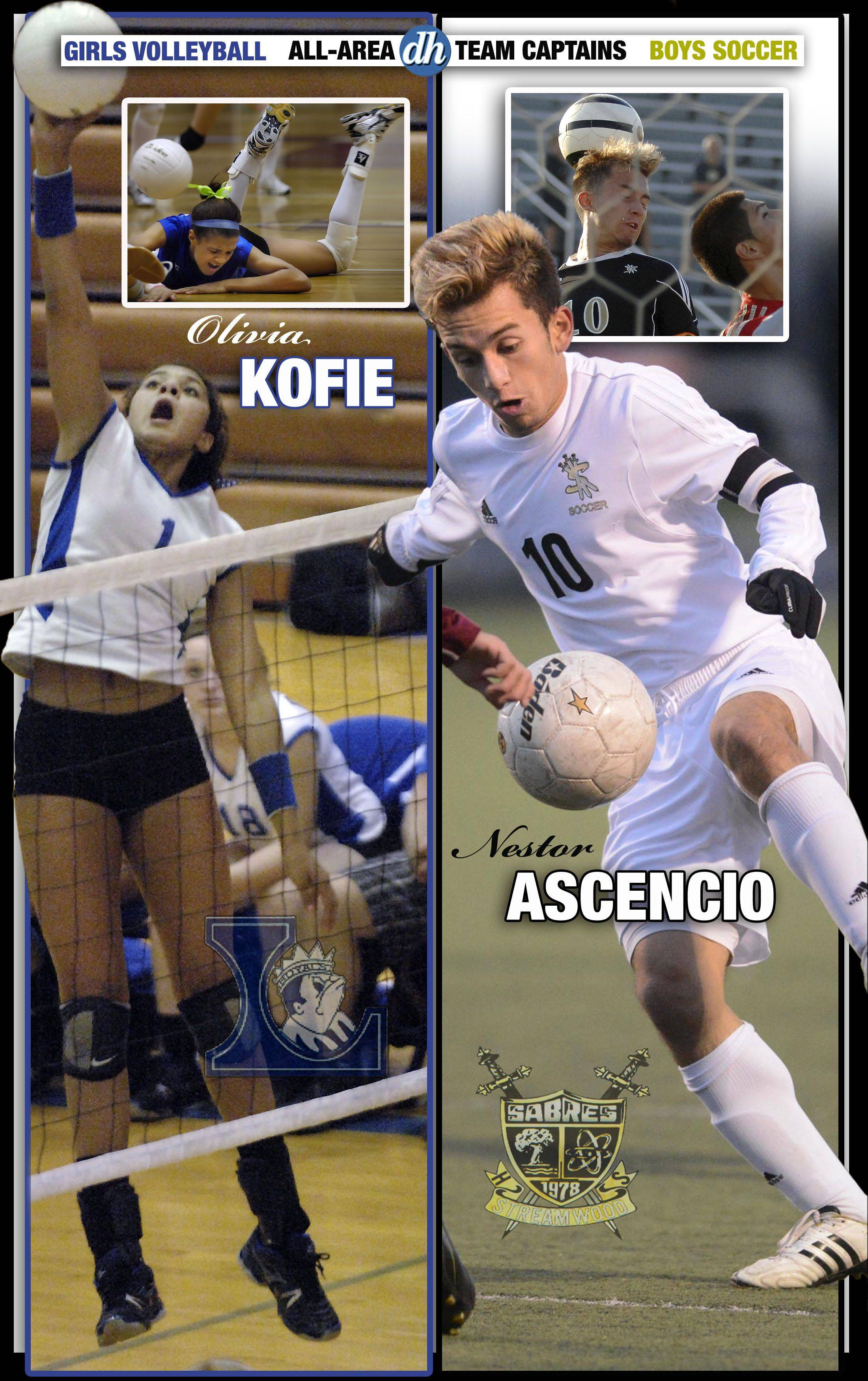 Boys soccer and Girls volleyball All-Area Team Captains in the Fox Valley are Olivia Kofie of Larkin and Nestor Ascencio of Streamwood.