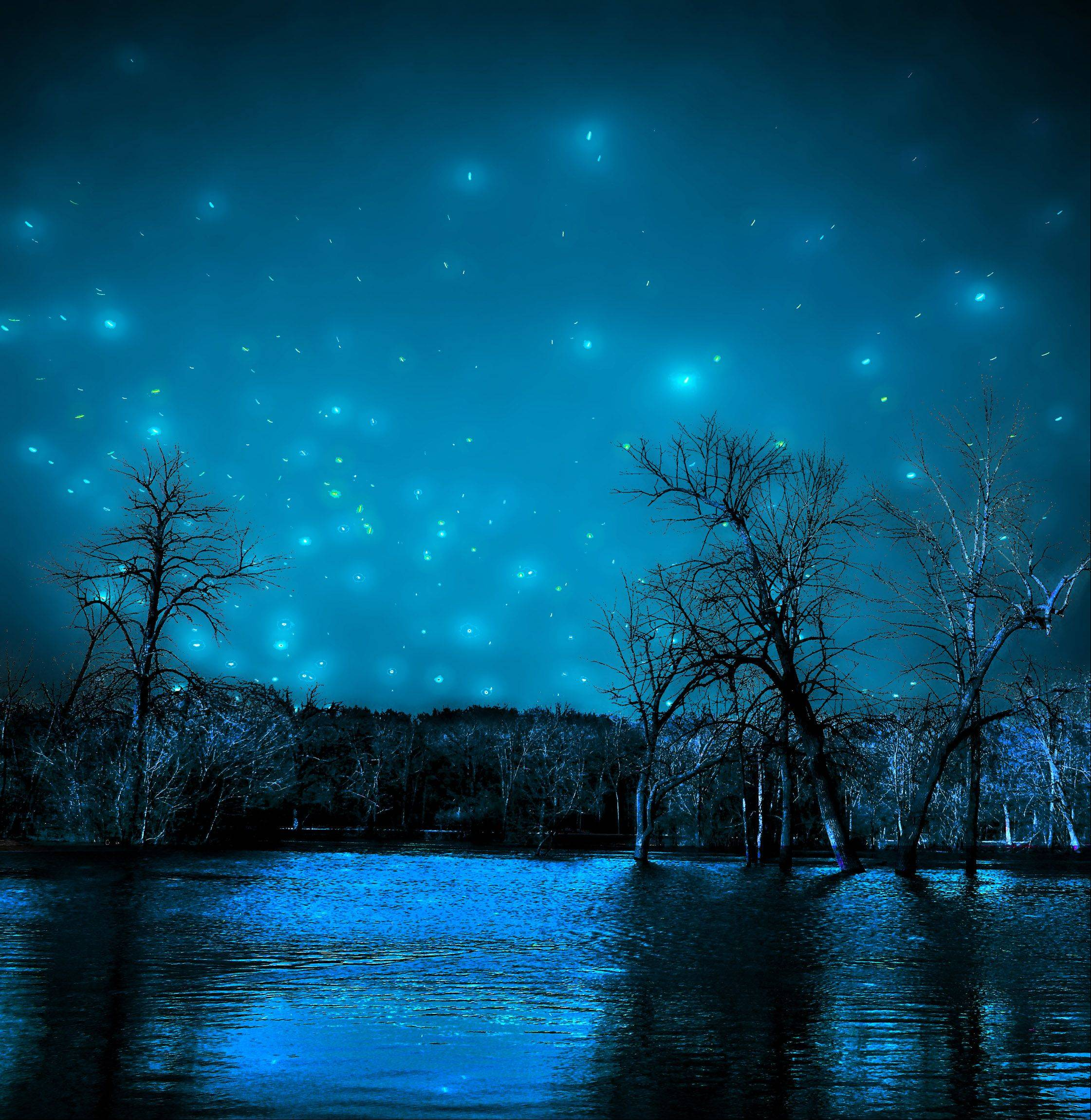 The flooded Des Plaines River taken at night several months ago.