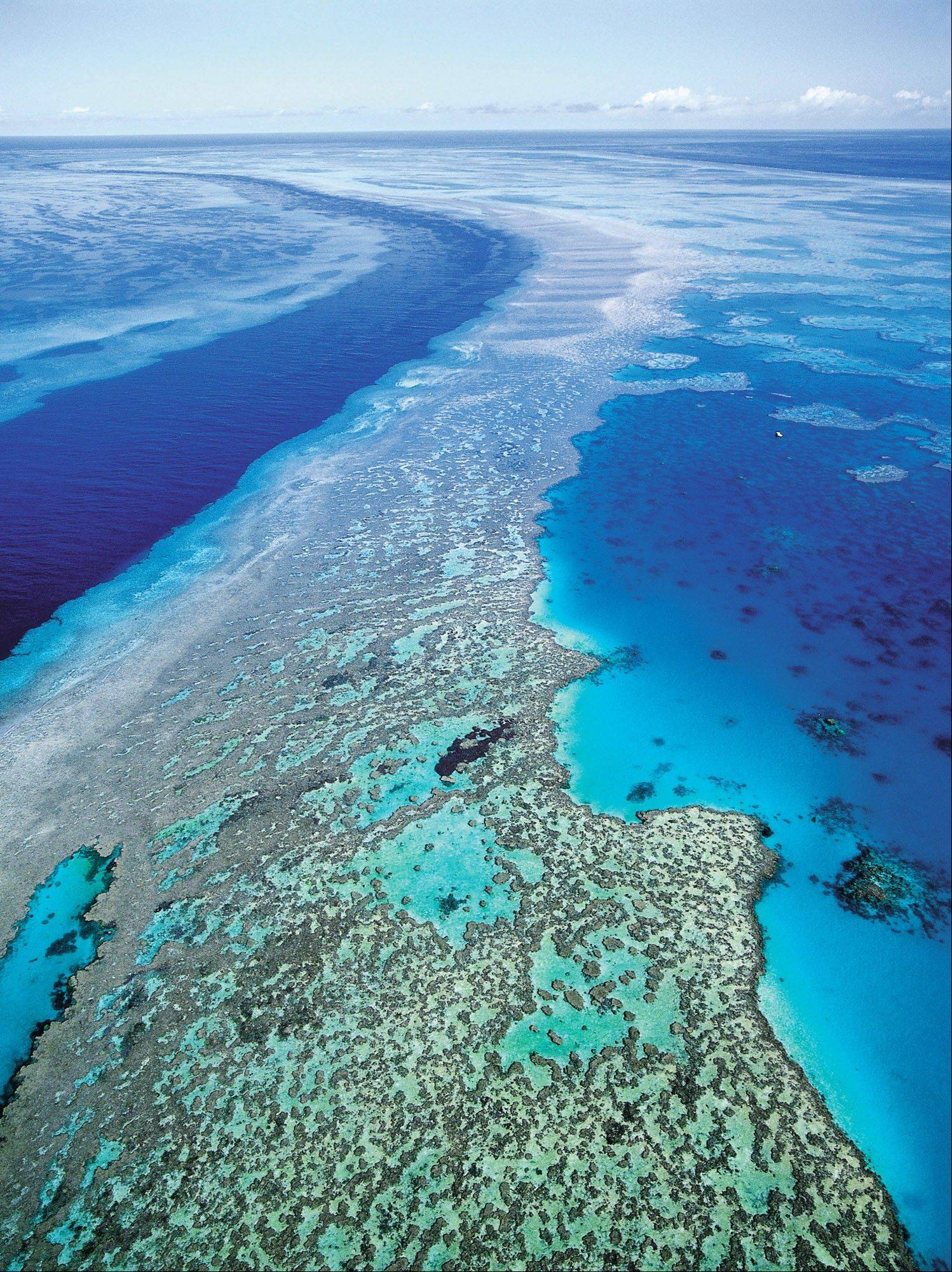 Associated Press/Sept. 2001An aerial view shows the Great Barrier Reef off Australia's Queensland state. Starvation, poverty, flooding, heat waves, droughts, war and disease already lead to human tragedies. They're likely to worsen as the world warms from climate change, a leaked draft of an international scientific report forecasts.