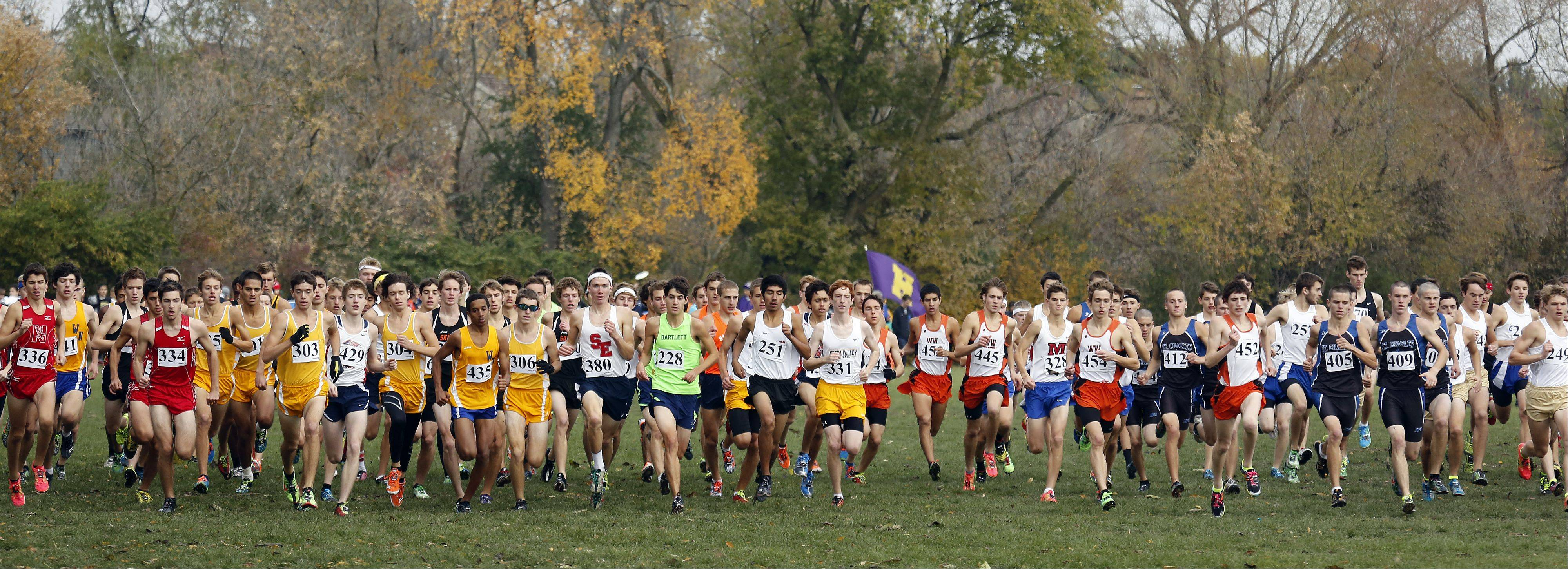 The start of the Waubonsie Valley boys cross country Sectional in Aurora.