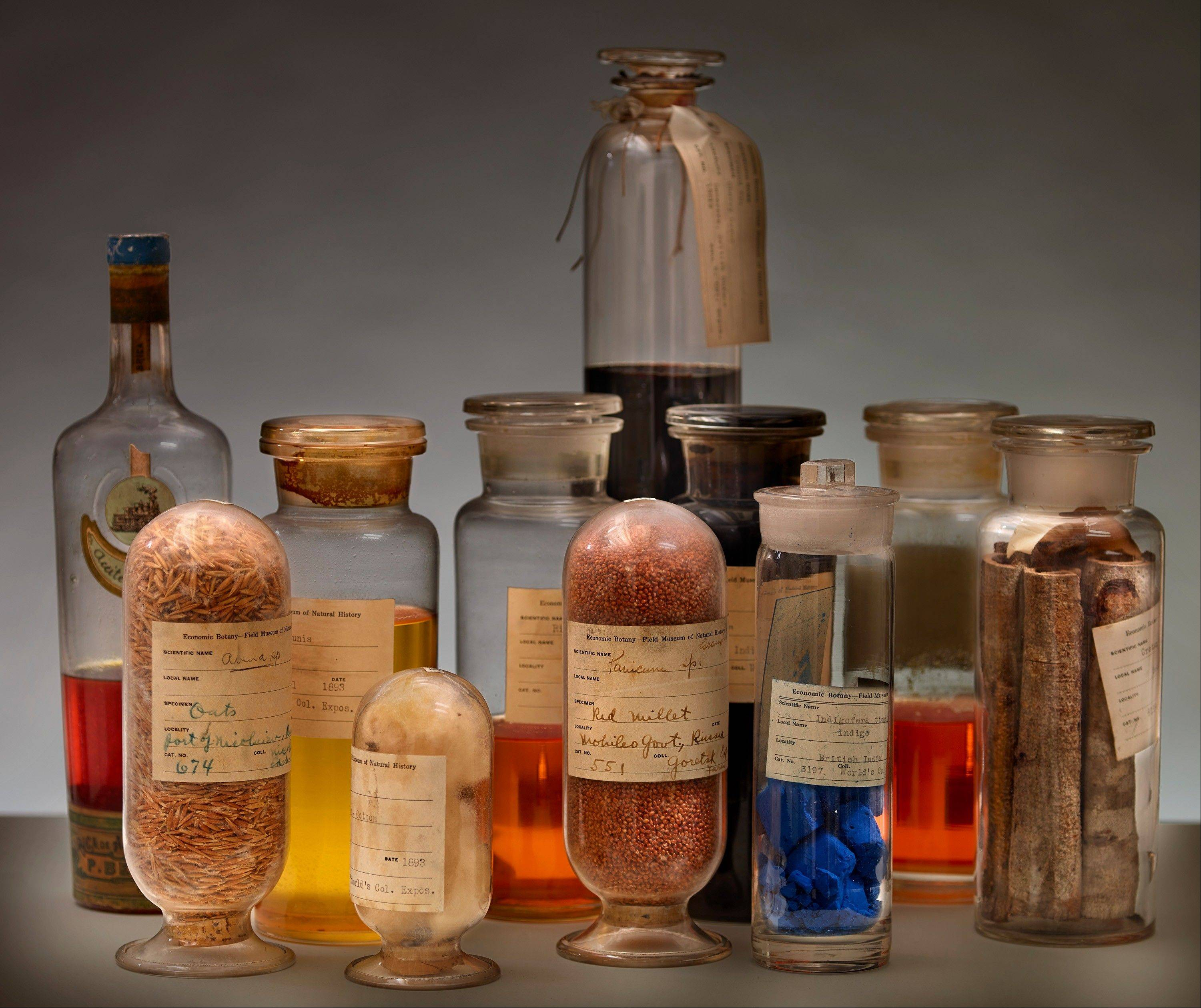 "In many ways, the 1893 World's Fair was a ""trade show."" Botany collections at the fair were displayed only to show resources available in other countries and the United States. The exhibit shows oils, woods, fibers and grains in their original glass containers."