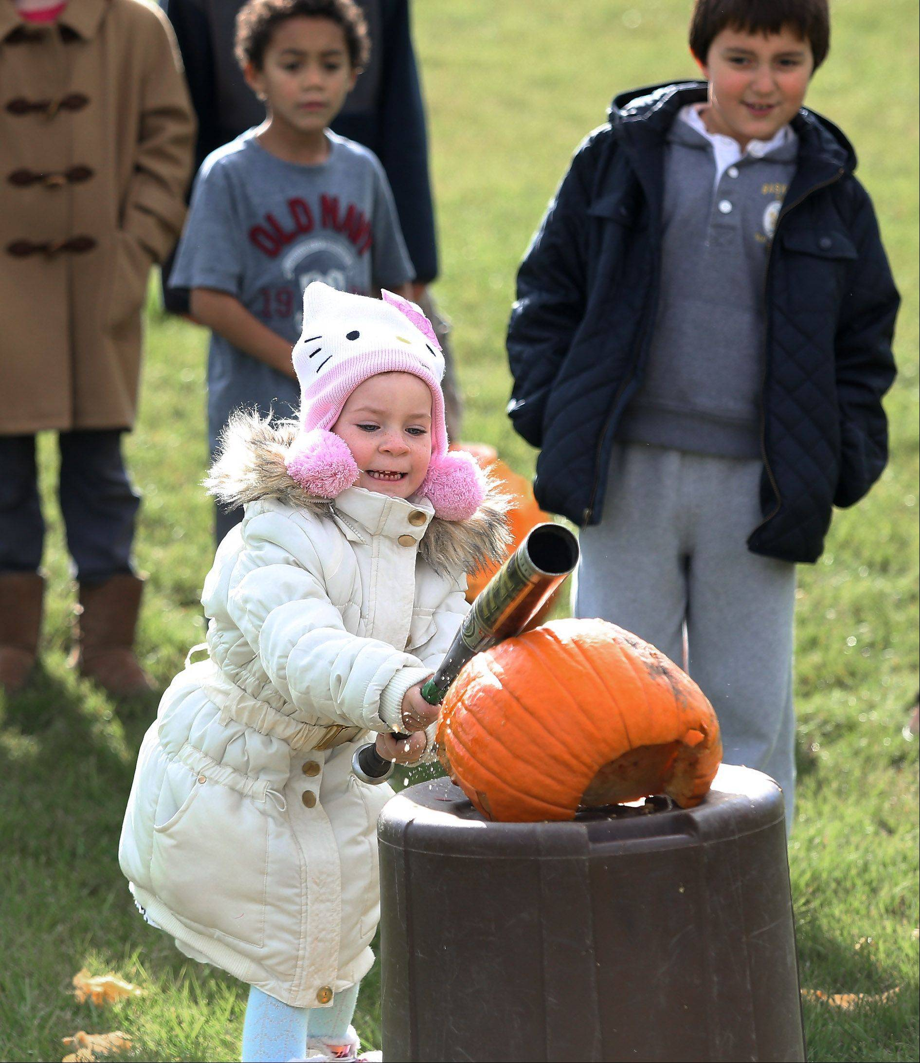 Five-year-old Elsa Heyer bashes a pumpkin with a bat Sunday during Mundelein's 6th annual Pumpkin Drop at Keith Mione Community Park. Families brought their Halloween pumpkins to the event where they were bashed, rolled and flung with a catapult.