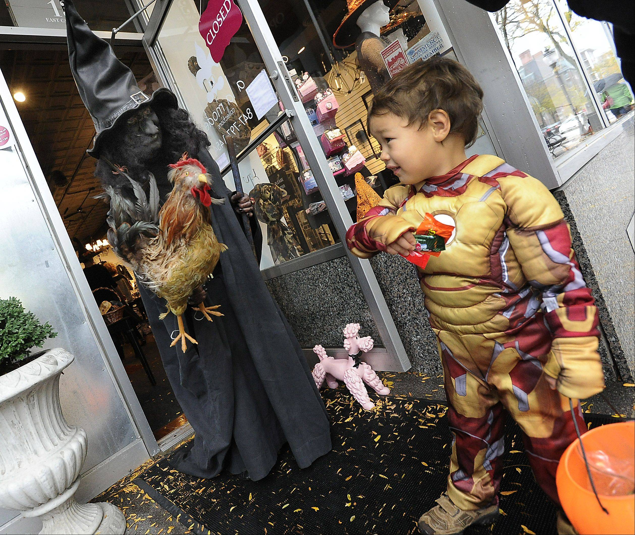 Kyte Coulter, 3, of Mt. Prospect, pays no attention to witch Jackie Kendrigan as she scares kids with her rooster during the Treat or Treat time in downtown Arlington Heights on Halloween.