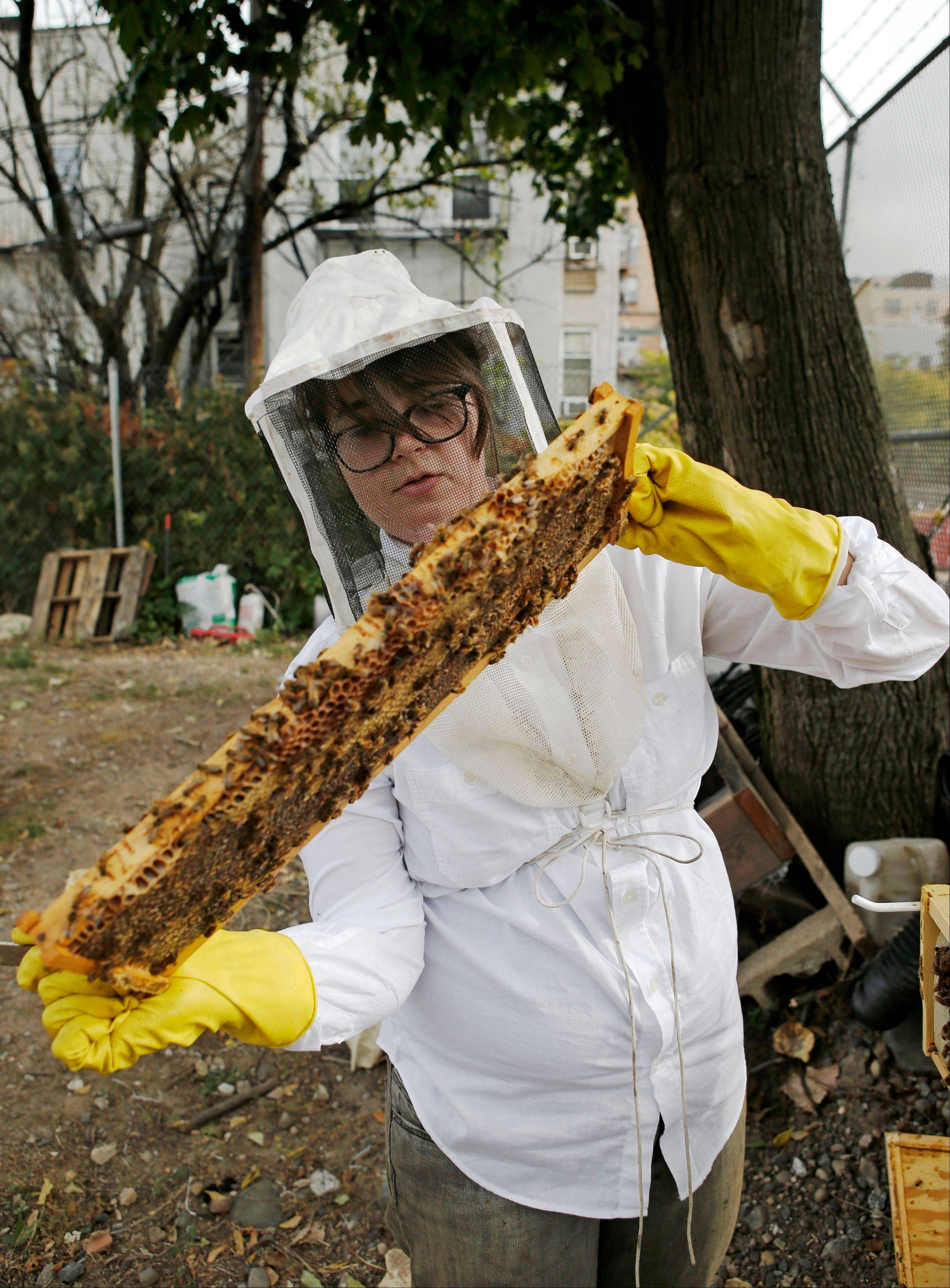 Beekeeper Kellen Henry inspects bees from her Feedback Farms hive in the Myrtle Village Green community garden in the Bedford-Stuyvesant section of Brooklyn in New York.
