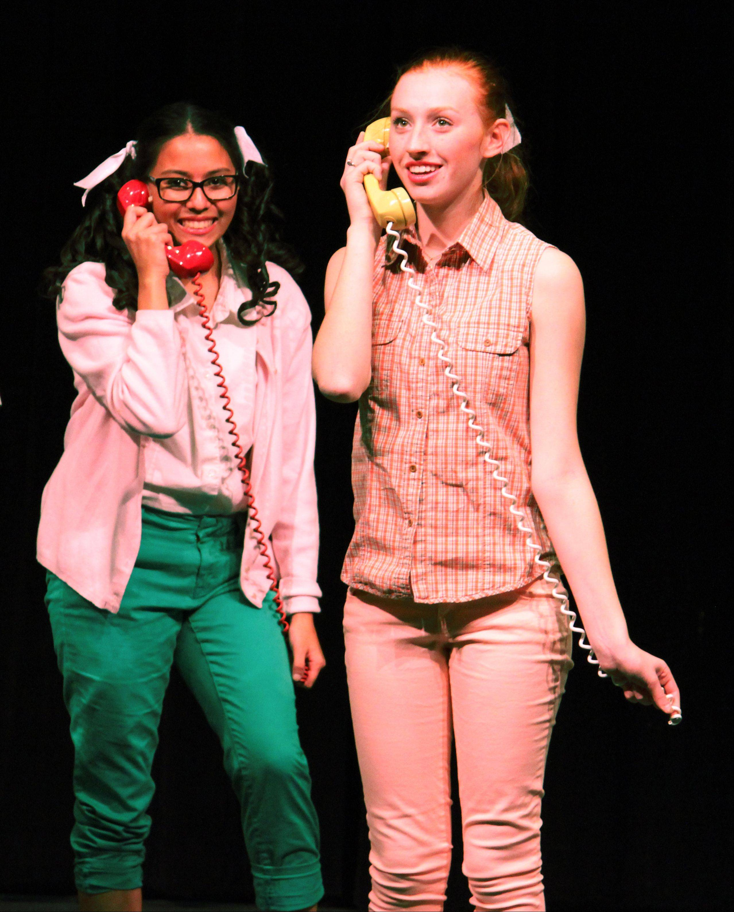 "Teenage girls' idolization of a celebrity is one of the themes of ""Bye Bye Birdie."" The musical will be staged at Rosary High School in Aurora this weekend."