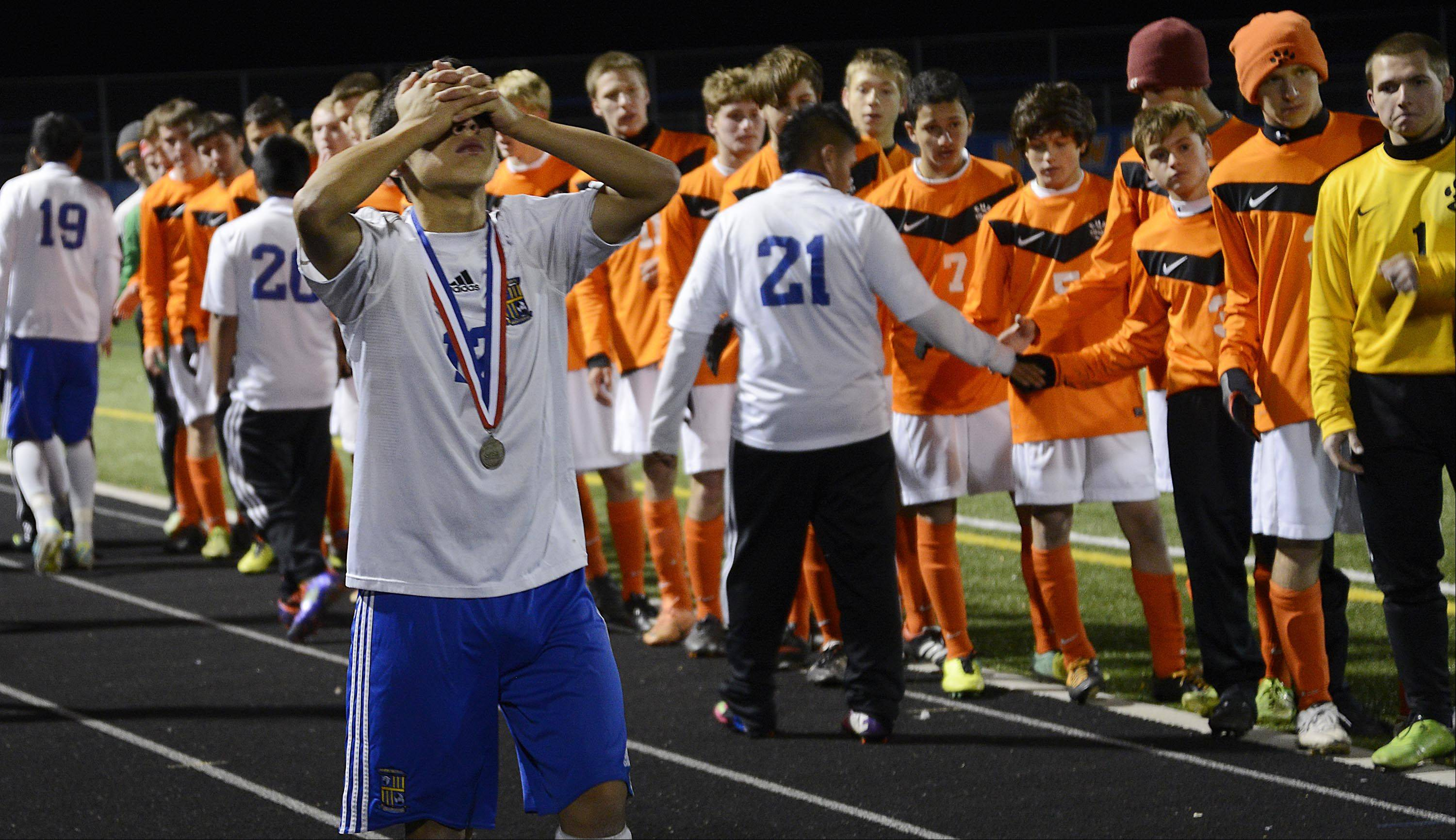 Wheeling's Aldredo Rocha covers his eyes after shaking hands with Edwardsville following the Wildcats' 2-1 loss in the Class 3A boys soccer state championship game Saturday night in Hoffman Estates.