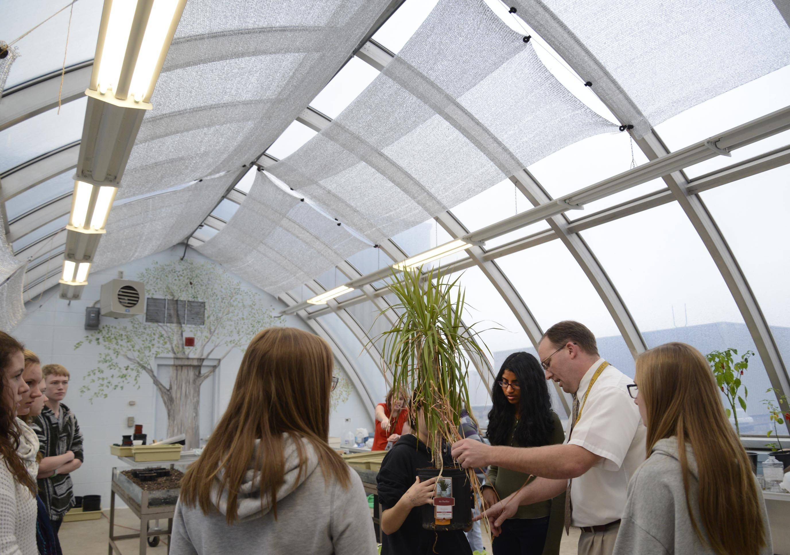 Terry Stroh, head of the science department at Jacobs High School, works with students in the newly renovated greenhouse on the high school's roof. Stroh and the club cleaned the old greenhouse that the school used for storage.