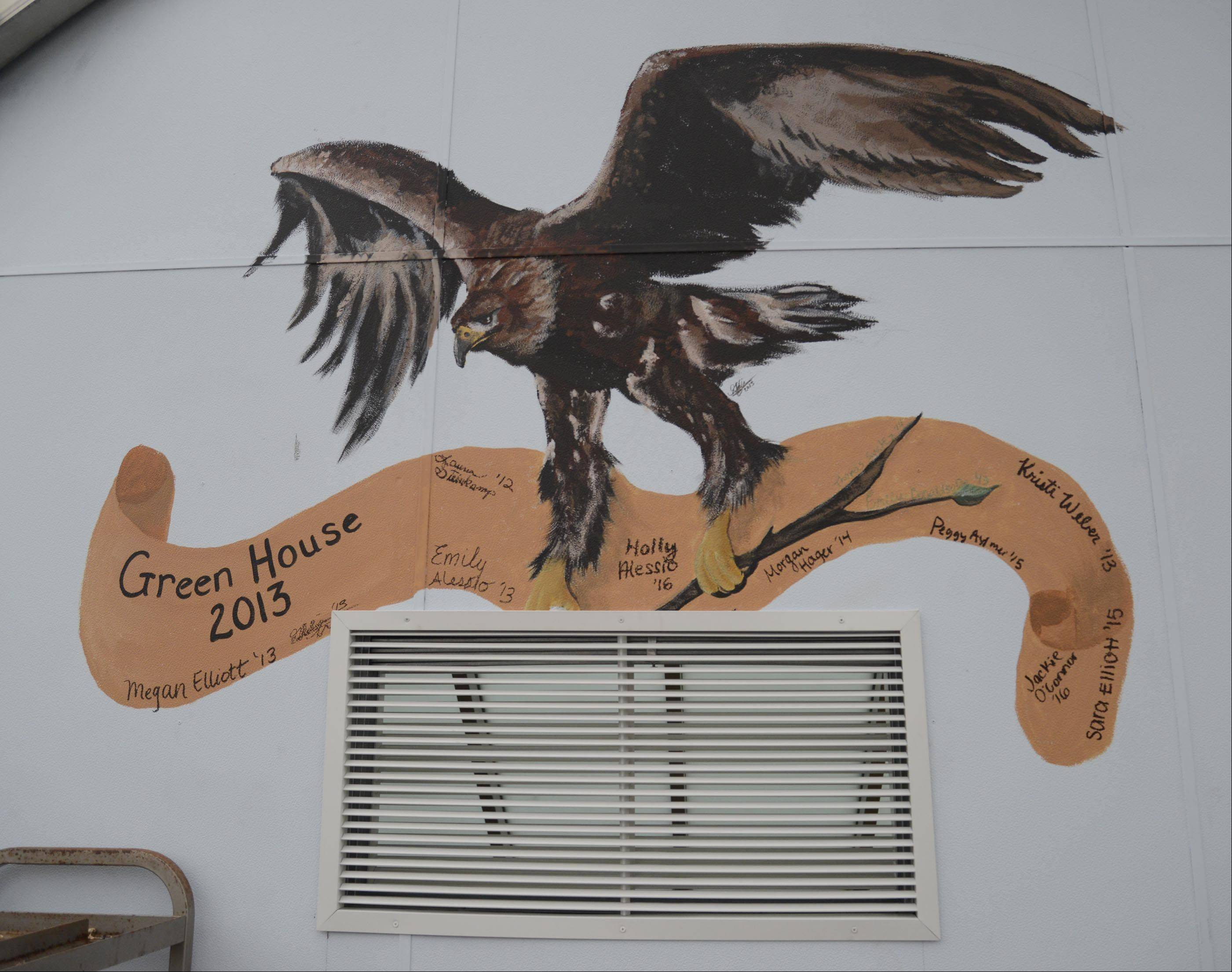 Gabi Navarro, a Jacobs High School student who graduated in the spring, painted this mural inside the greenhouse that was previously used for storage. Navarro was part of the school's Green Eagles environmental club, which took on the greenhouse's renovation in the spring.