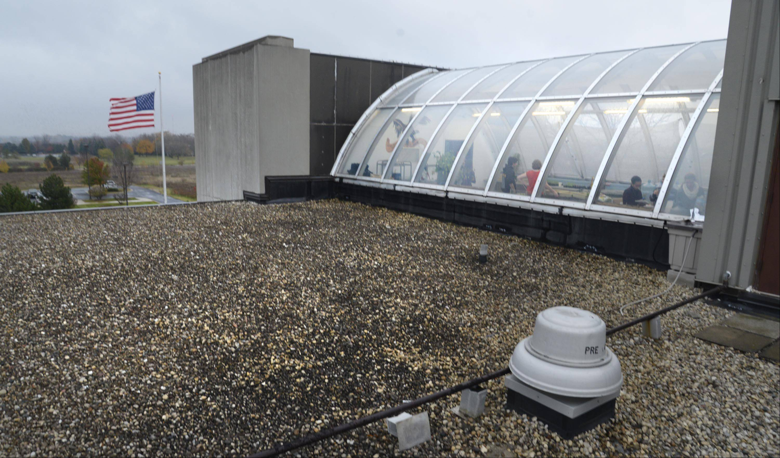 Containers on the roof of the recently renovated greenhouse at Jacobs High School collect rainwater used to water the plants within a hydroponic system. There's about $1,400 left over from a $5,000 grant the Green Eagles club received to do the renovations. It will use that money for additional greenhouse equipment.