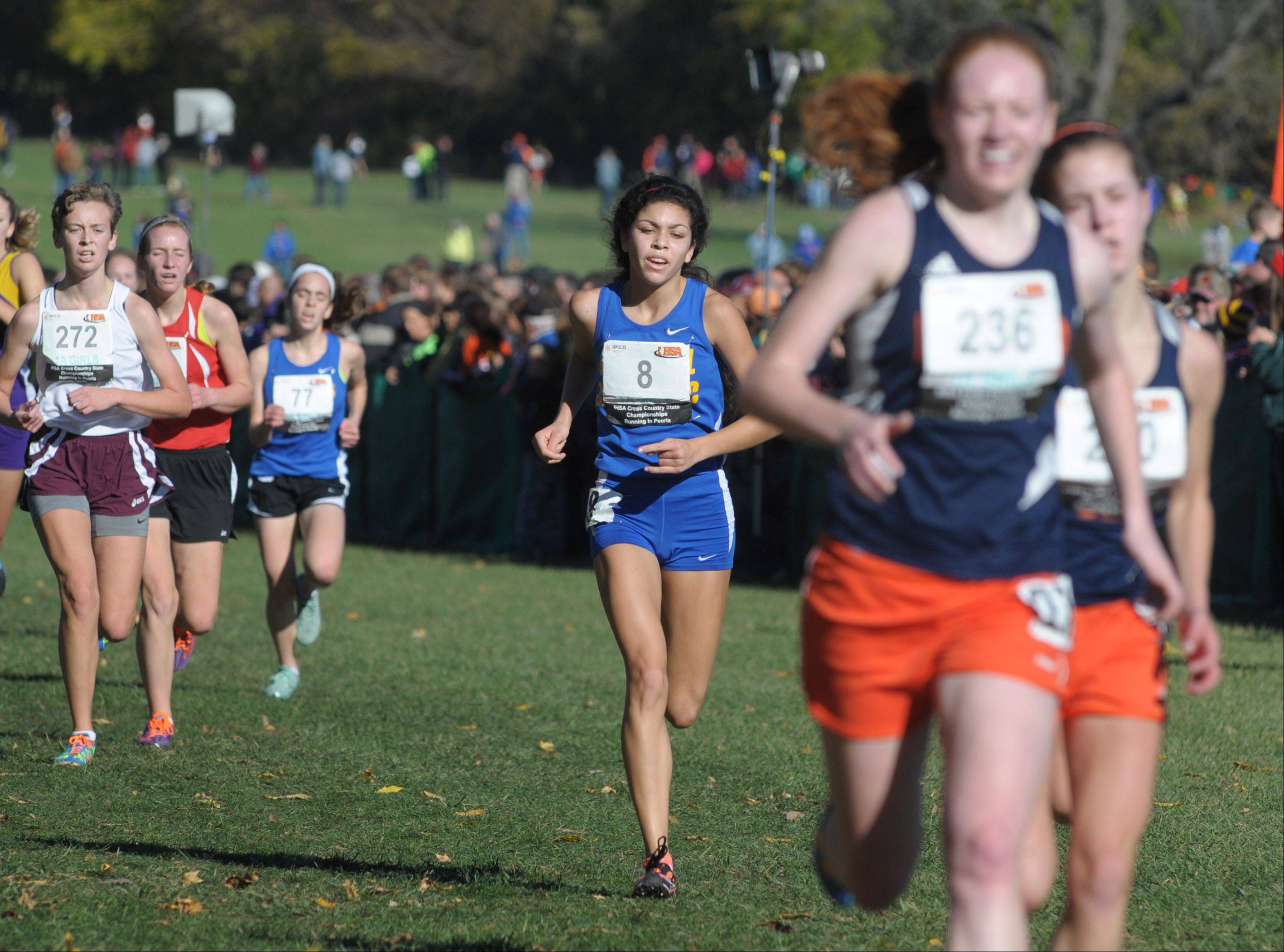 Aurora Central Catholic's Karina Liz nears the finish line to take 59th place in the Class 1A IHSA cross country state final at Detweiller Park in Peoria on Saturday, November 9.
