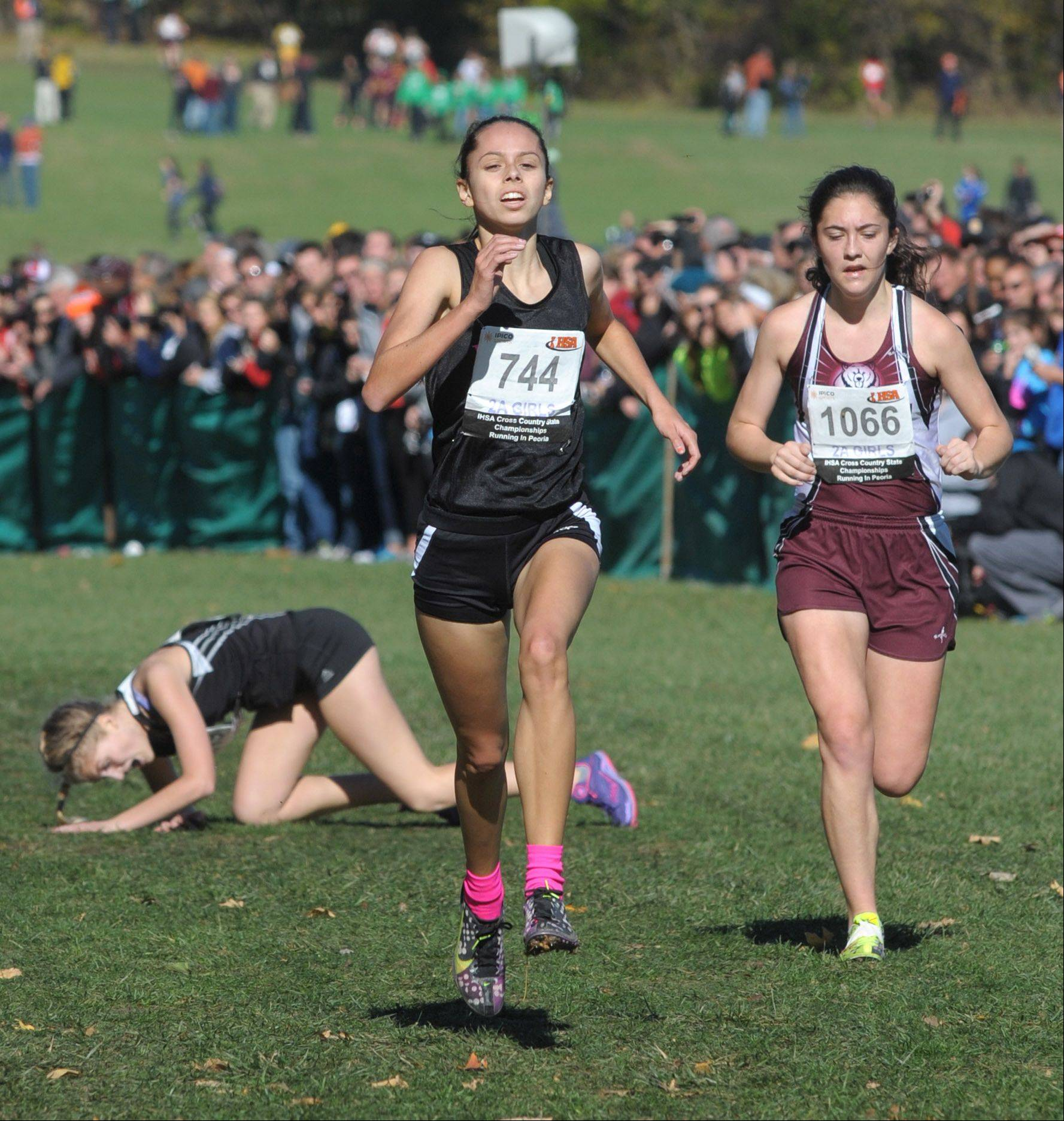 Rosary's Madison Ronzone (744) comes in 32nd place in the Class 2A IHSA cross country state final at Detweiller Park in Peoria on Saturday, November 9.