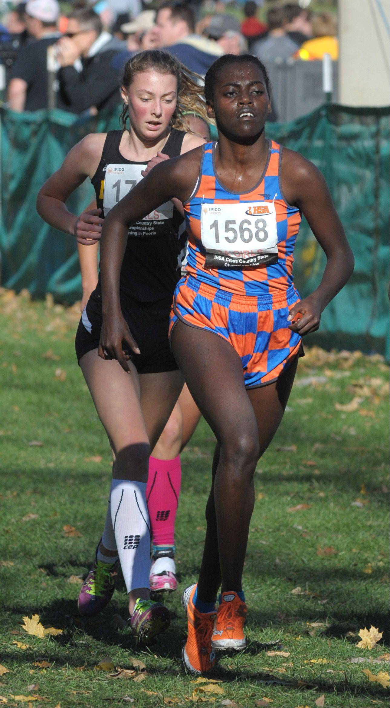 Hoffman Estates Solome Haile takes 55th place in the Class 3A IHSA cross country state finals at Detweiller Park in Peoria on Saturday, November 9.