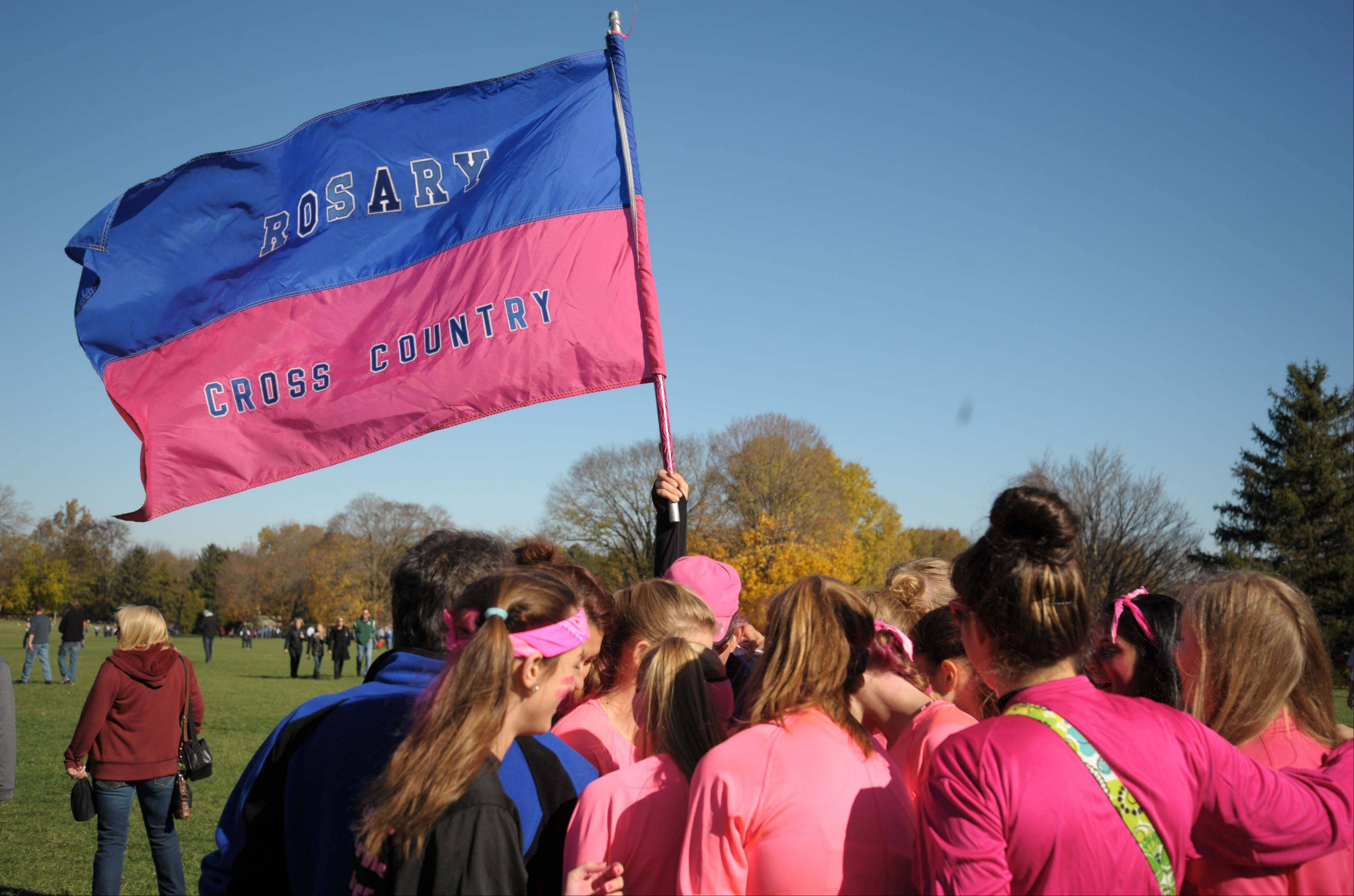 Images from the IHSA girls state cross country finals in Peoria Saturday, November 9, 2013.