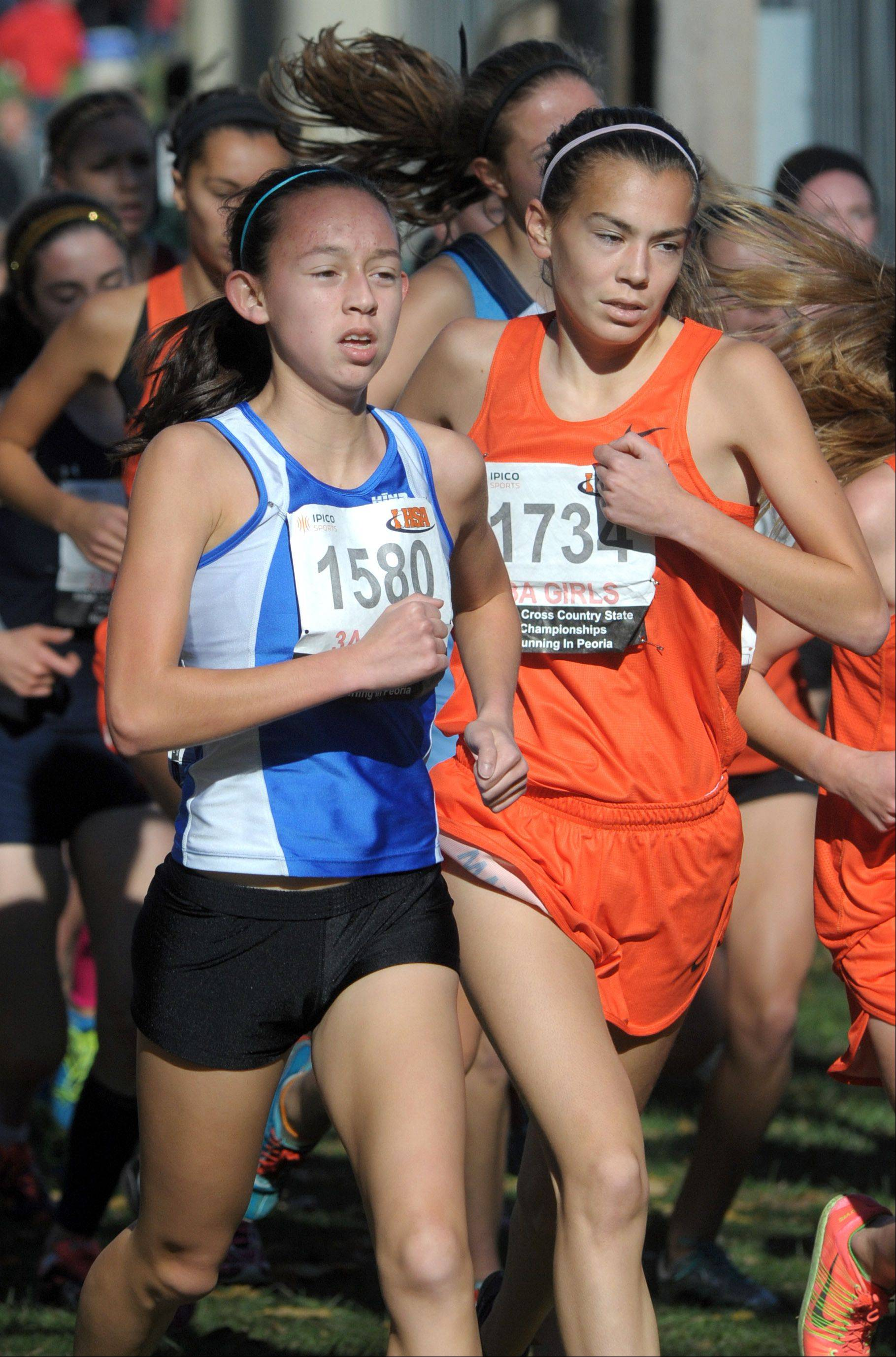 Lake Zurich's Kristie Houghton (1580) and Wheaton Warrenville South's Natalia Boettcher (7134) compete in the Class 3A cross country state finals at Detweiller Park in Peoria on Saturday.