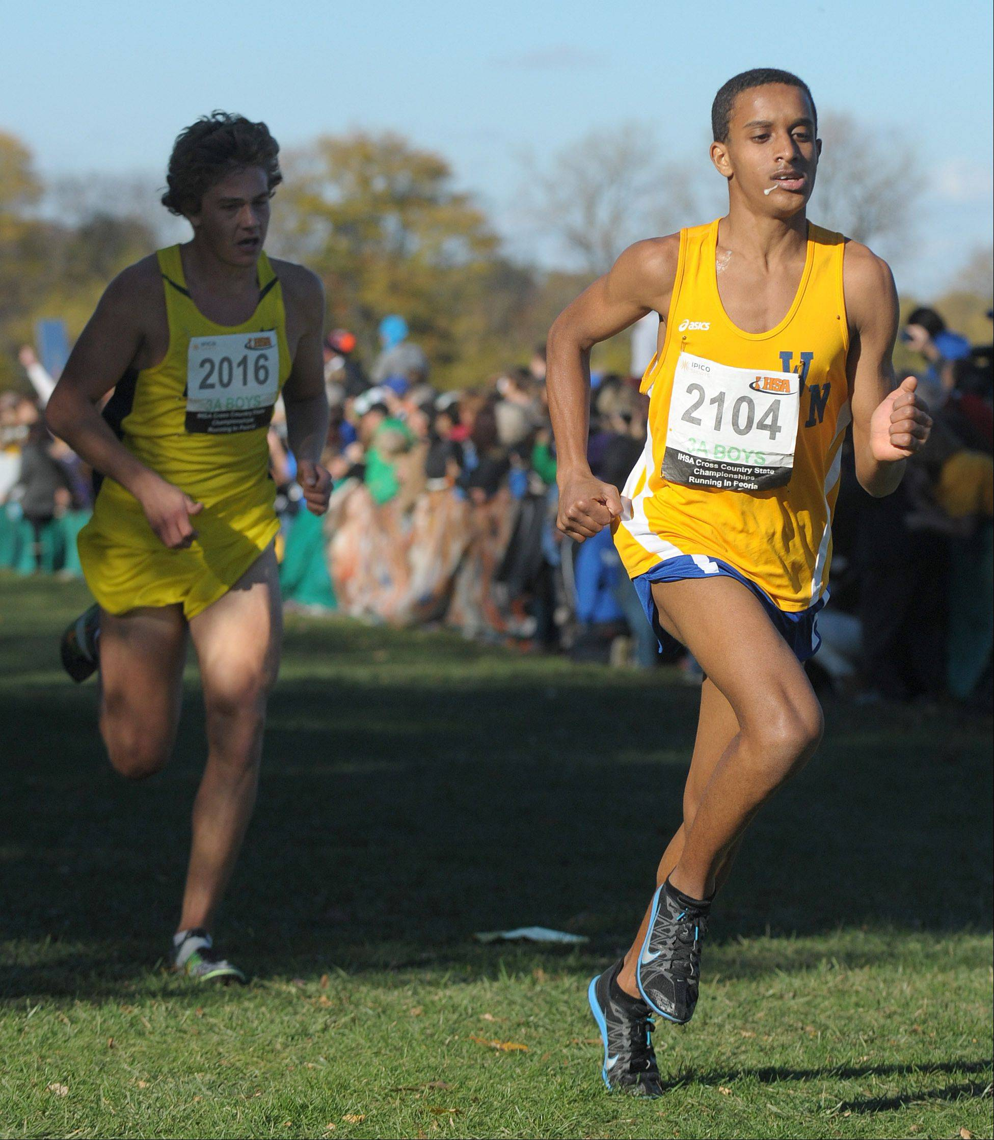 Wheaton North's Joseph Emmanuel takes 14th place (with Neuqua Valley's Nick Bushelle trailing) in the Class 3A IHSA cross country state final at Detweiller Park in Peoria on Saturday, November 9.