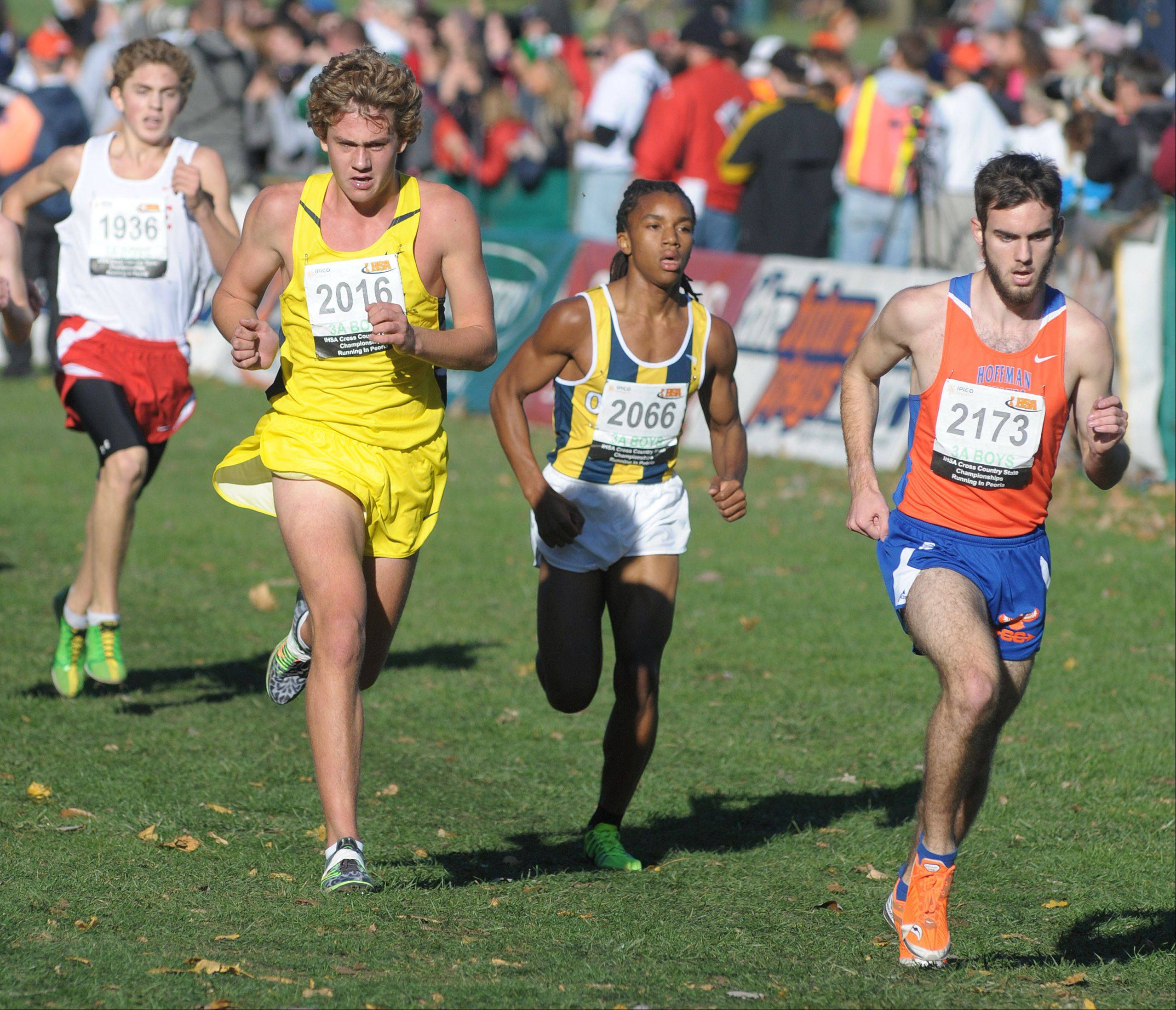 Neuqua Valley's Nick Bushelle (2016) and Hoffman Estates' Billy Thomas (2173) compete in the Class 3A IHSA cross country state final at Detweiller Park in Peoria on Saturday, November 9.