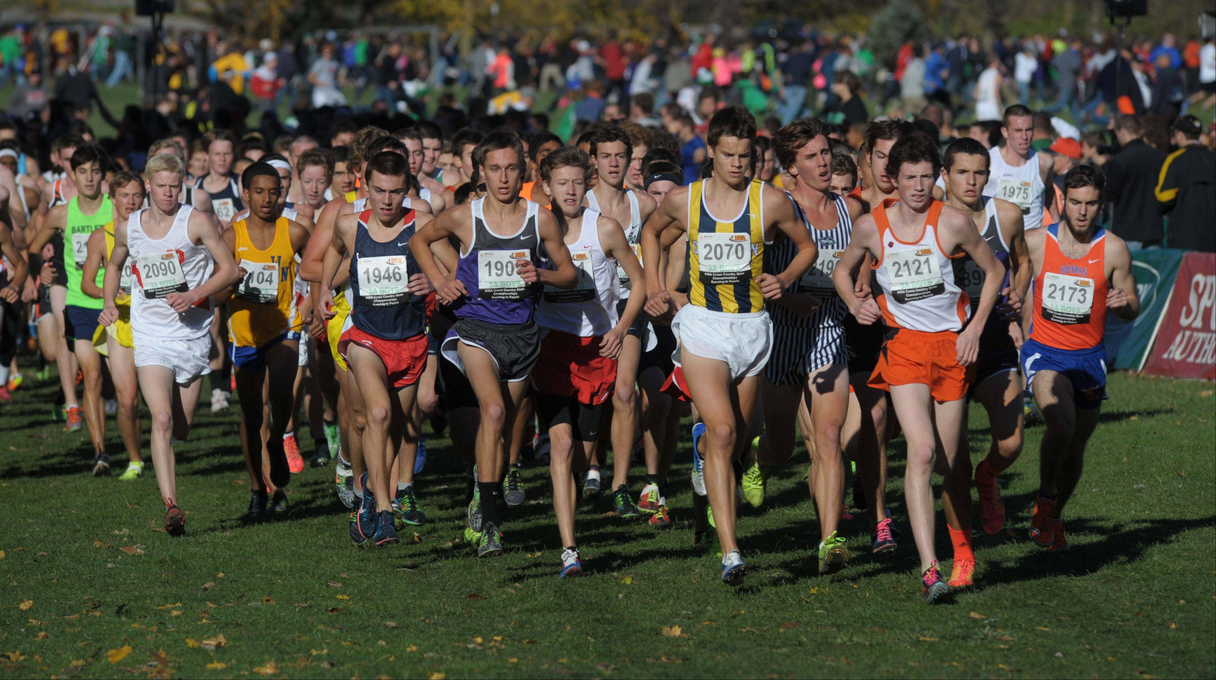 Images from the IHSA boys state cross country finals in Peoria Saturday, November 9, 2013.