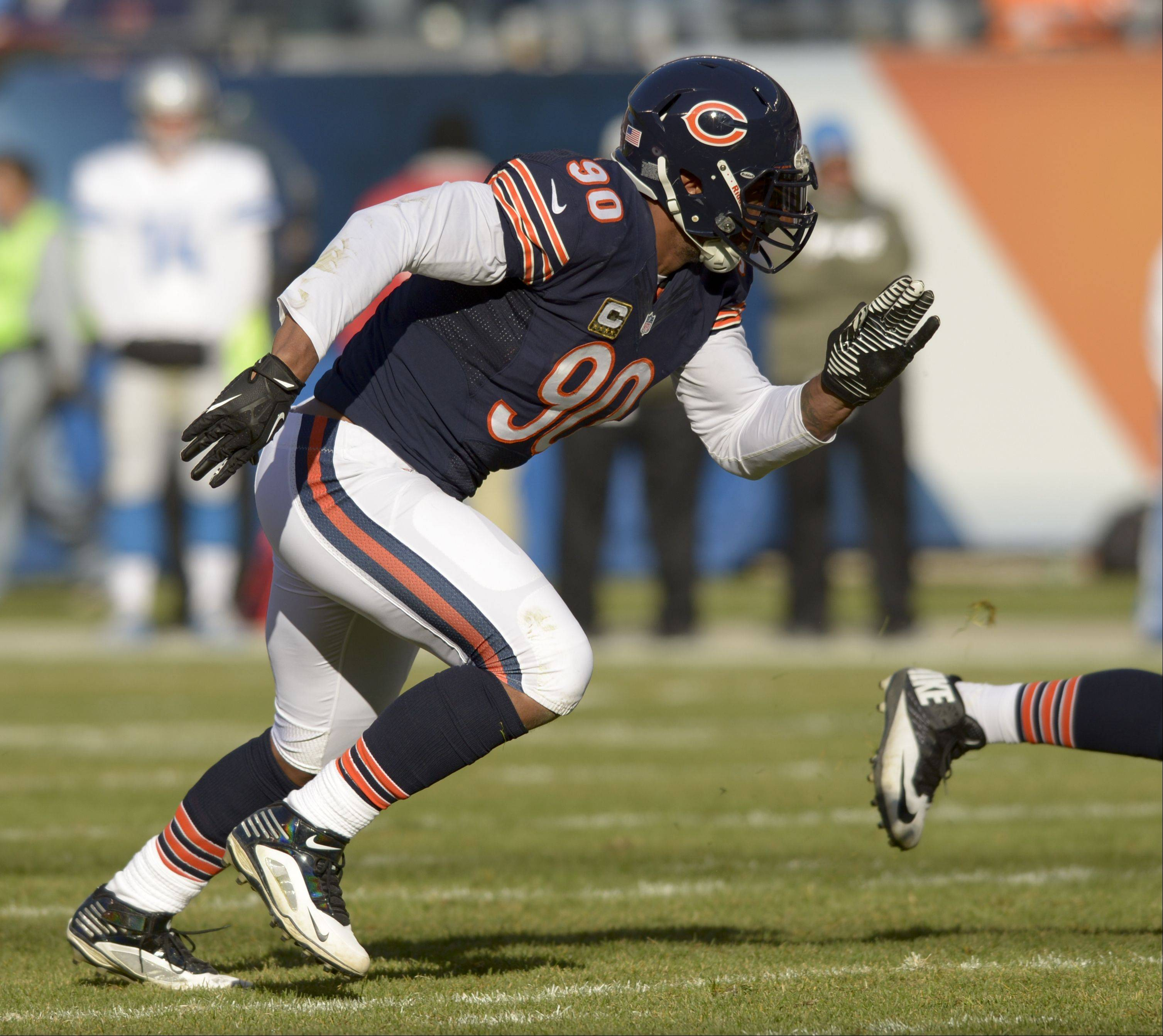 Chicago Bears defensive end Julius Peppers plays against the Detroit Lions at Soldier Field, Sunday November 10th.