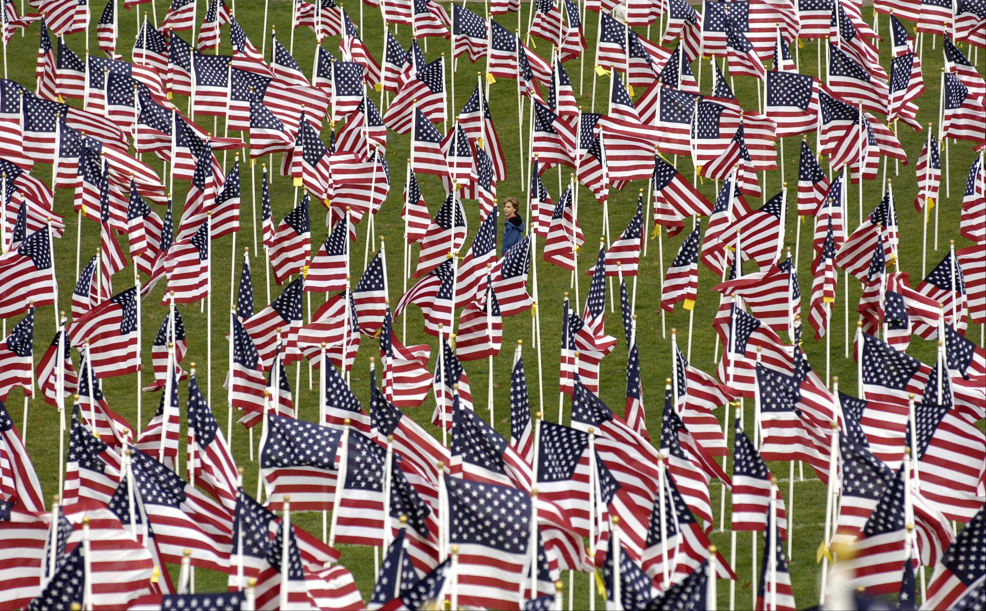 The Naperville Healing Field on Rotary Hill was a sea of red, white and blue Sunday as the city honored veterans with a Veteran�s Day Ceremony in 2012.