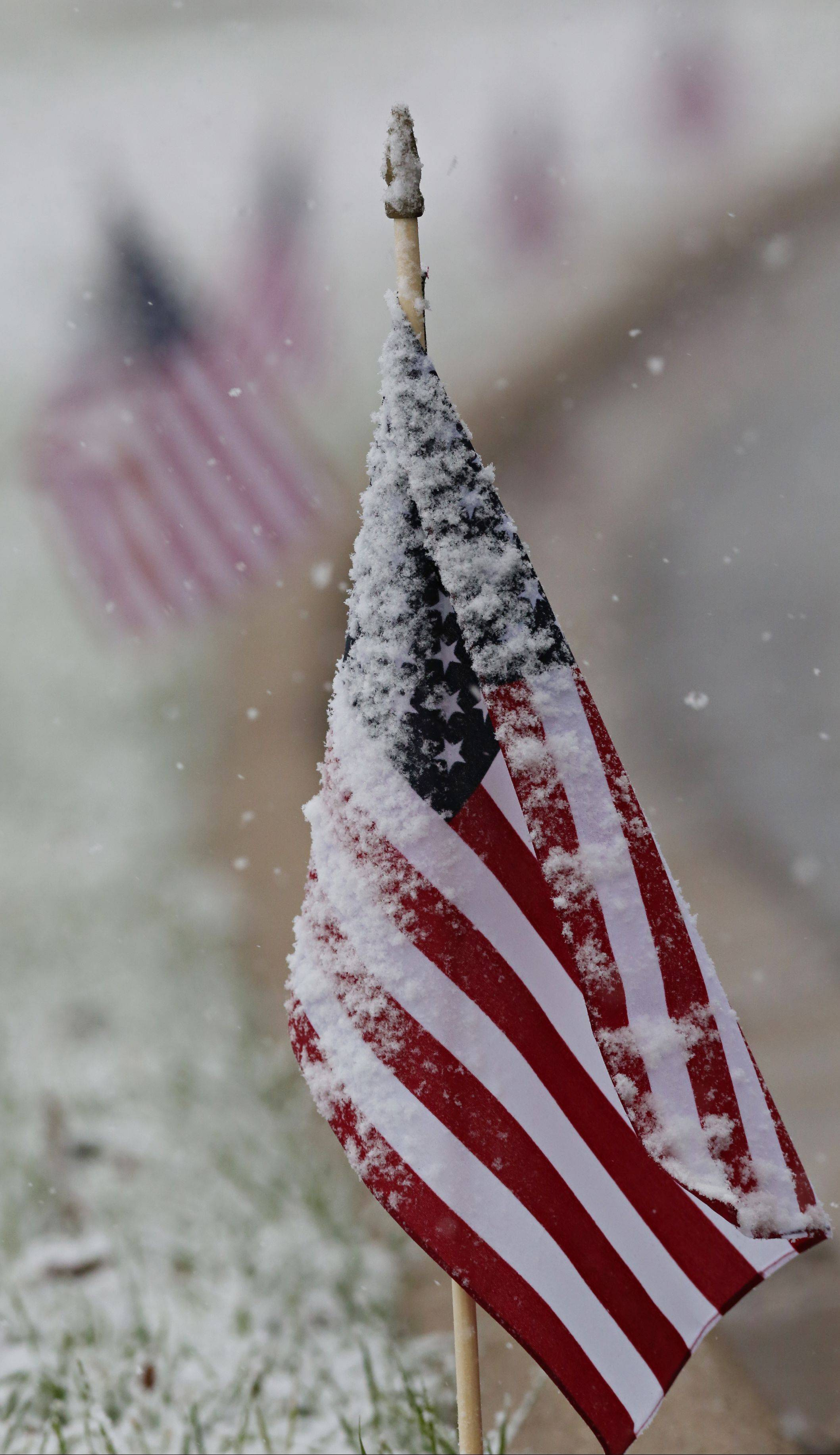 Snow coats a row of American flags lining an entrance road to Advocate Good Shepherd Hospital near Barrington.