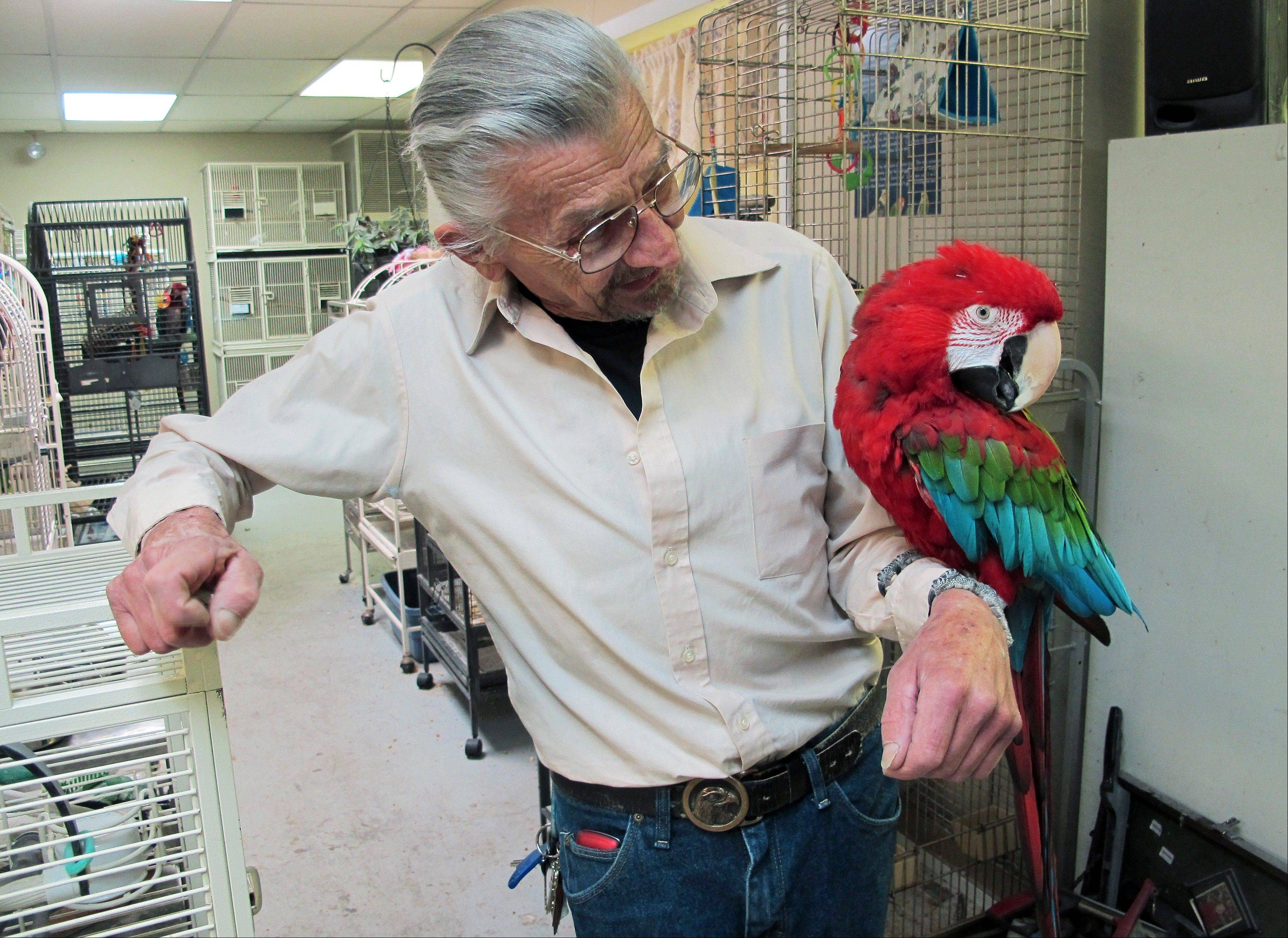 Stephen Lazicki holds Santina, a 14-year-old macaw, at Lazicki�s Bird House and Rescue in South Kingstown, R.I. Lazicki must find a new location for the shelter by Dec. 30 because the current building is destined to be torn down.