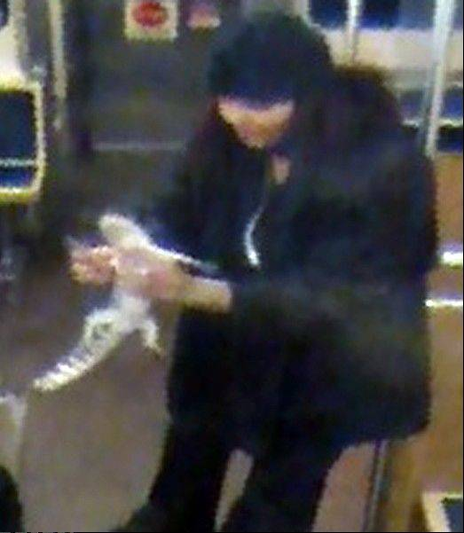 This security camera image provided by the Chicago Transit Authority on Wednesday shows a woman with a two-foot-long alligator aboard a CTA Blue Line train early in the morning of Nov. 1 in Chicago. Authorities are searching for the woman, who they believe discarded the reptile at O'Hare International Airport.