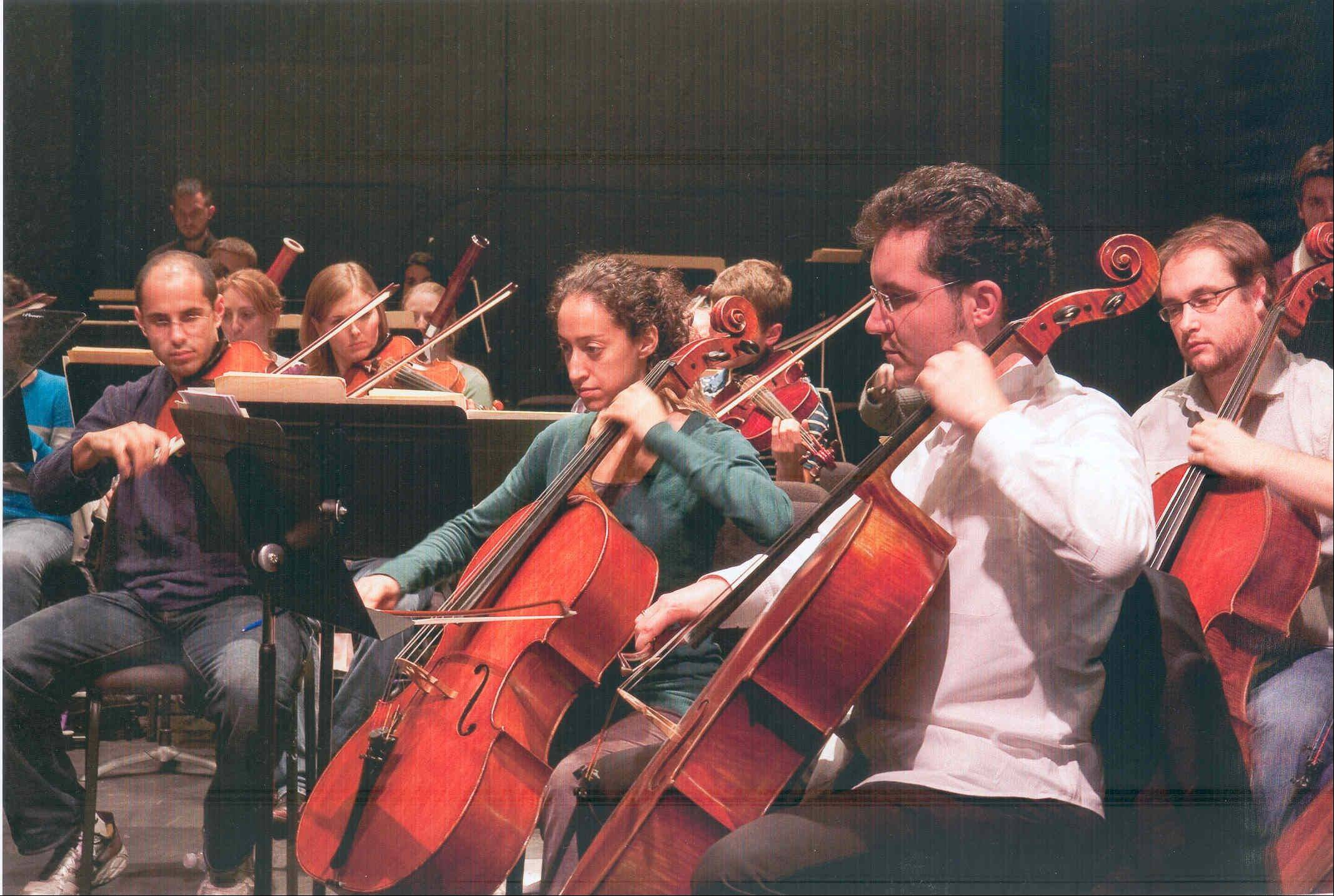 The strings section is the heart of the orchestra, with many of the members carrying over from one concert to the next.