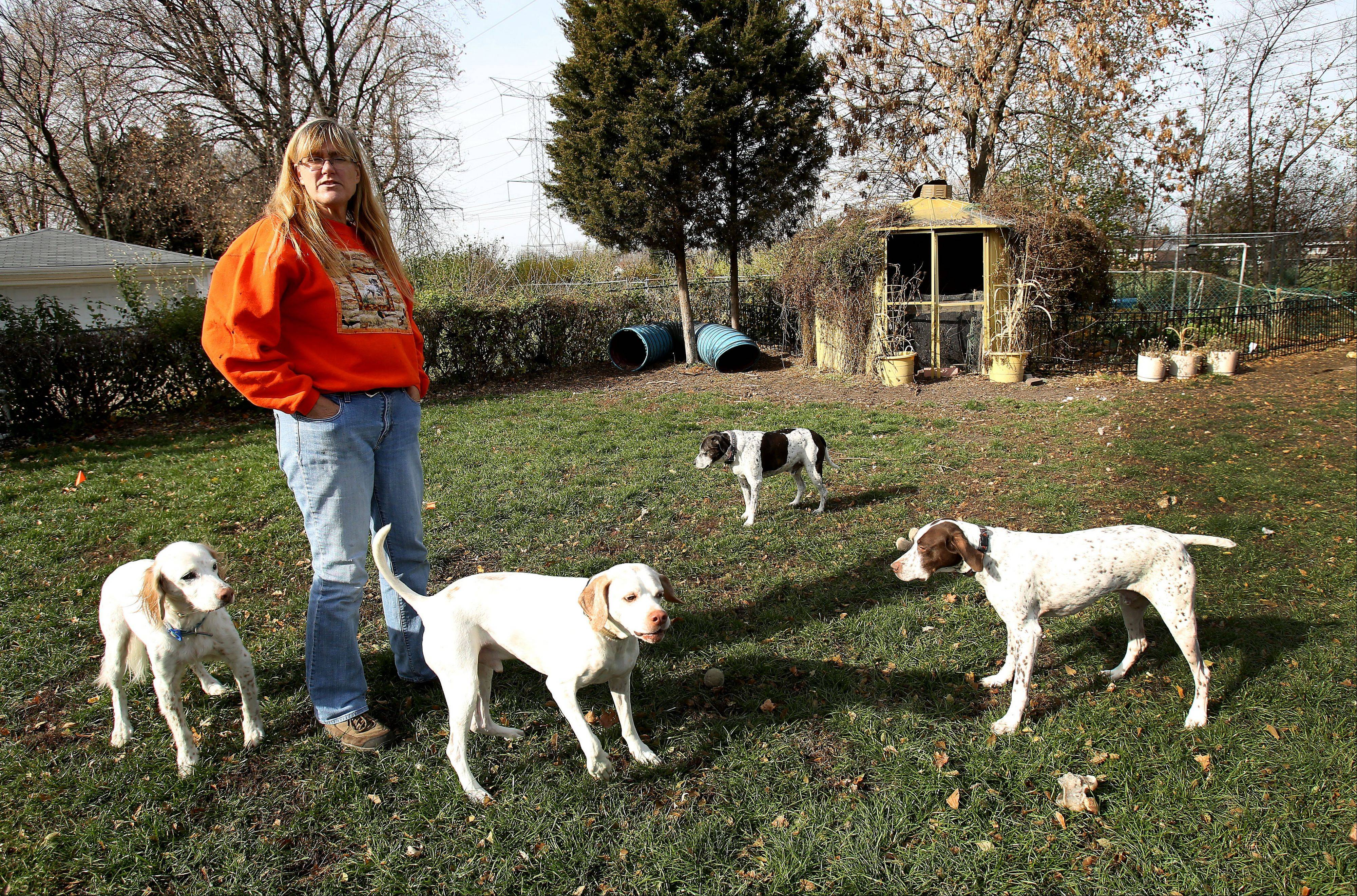 Lisa Spakowski, who started a dog rescue more than 12 years ago, could be fined up to $750 by the city of Wood Dale for having more dogs in her house than the city allows.