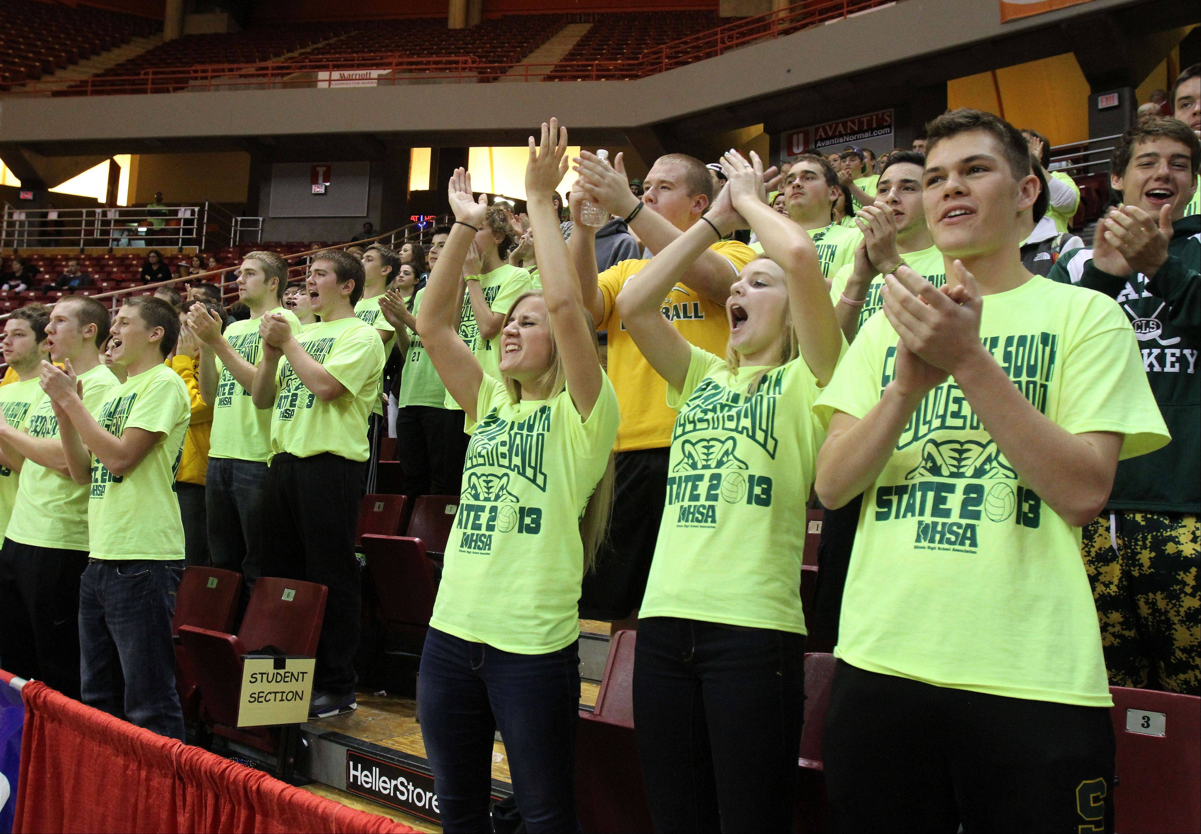 Crystal Lake South fans get into the spirit for the Class 4A state girls volleyball on Friday in Normal.