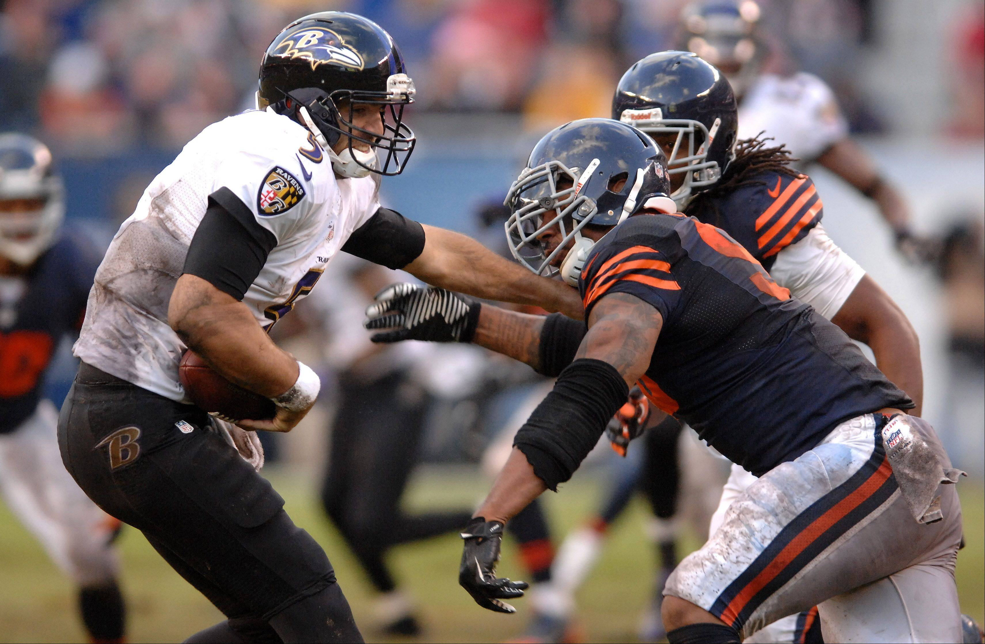 Chicago Bears defensive end Julius Peppers (90) sacks Baltimore Ravens quarterback Joe Flacco (5) during Sunday's game in Chicago.