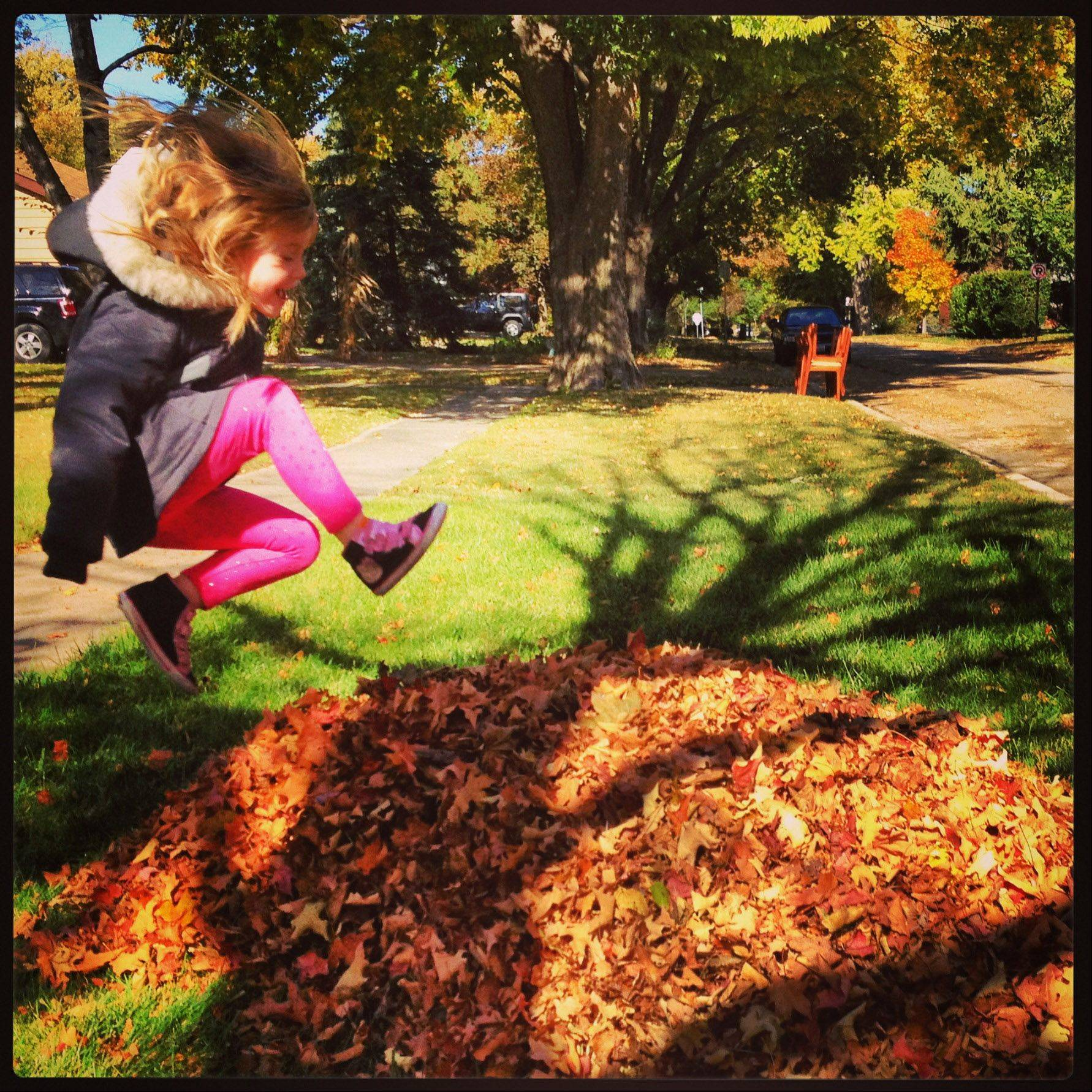 This photo was taken in our yard on Sunday, October 20 of my daughter jumping into the freshly raked leaves.