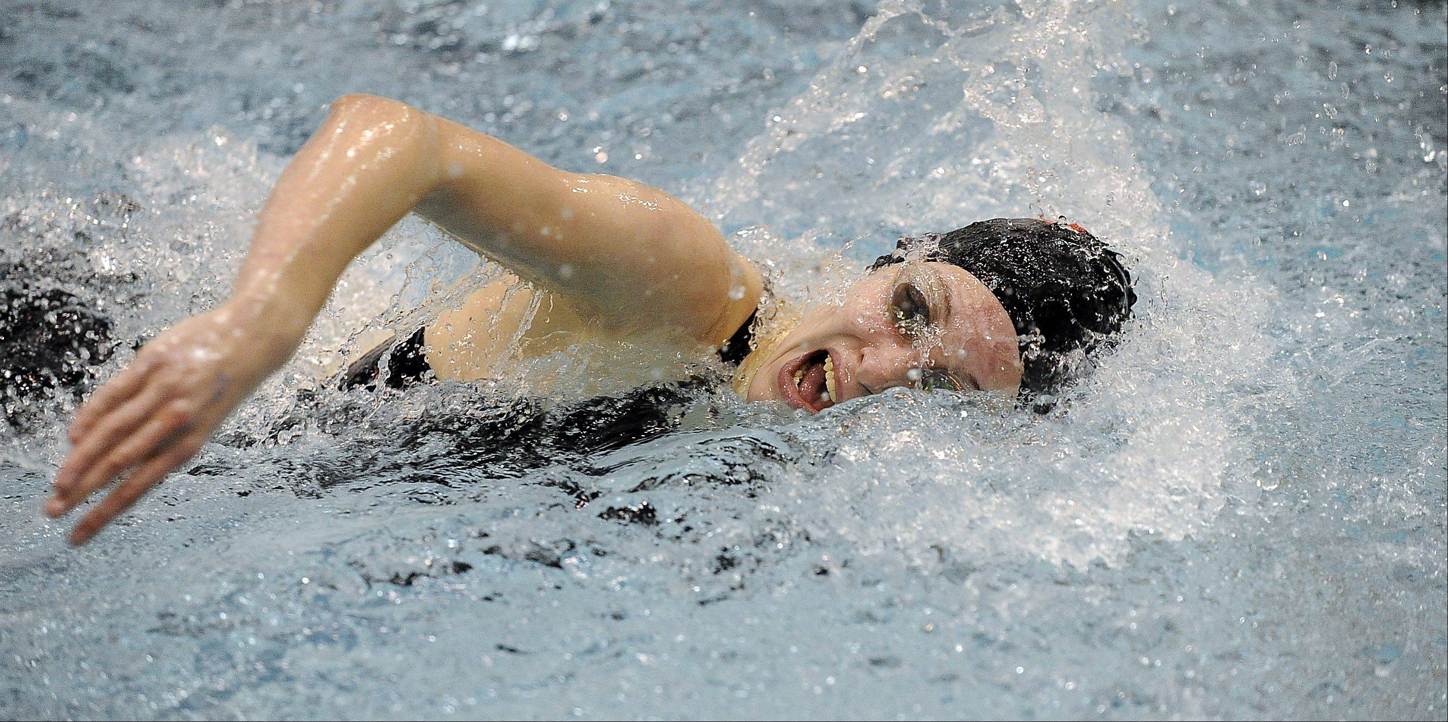 Kristin Anderson of Palatine High School races the 100-yard freestyle at the girls swimming state meet prelims at New Trier High School on Friday.