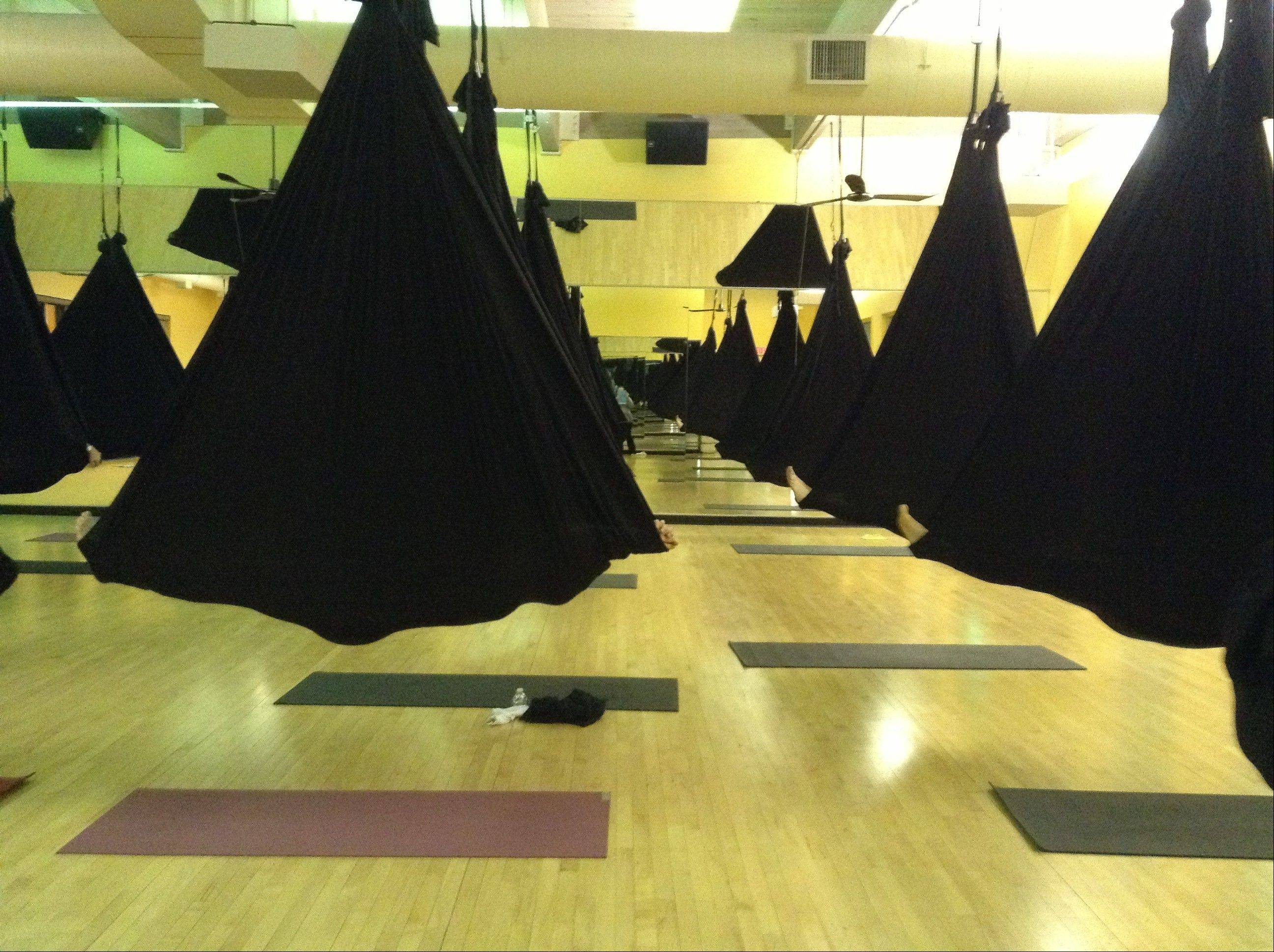 Students enjoy relaxation cocooned in their black hammocks during an aerial yoga class at Sky Fitness in Buffalo Grove.
