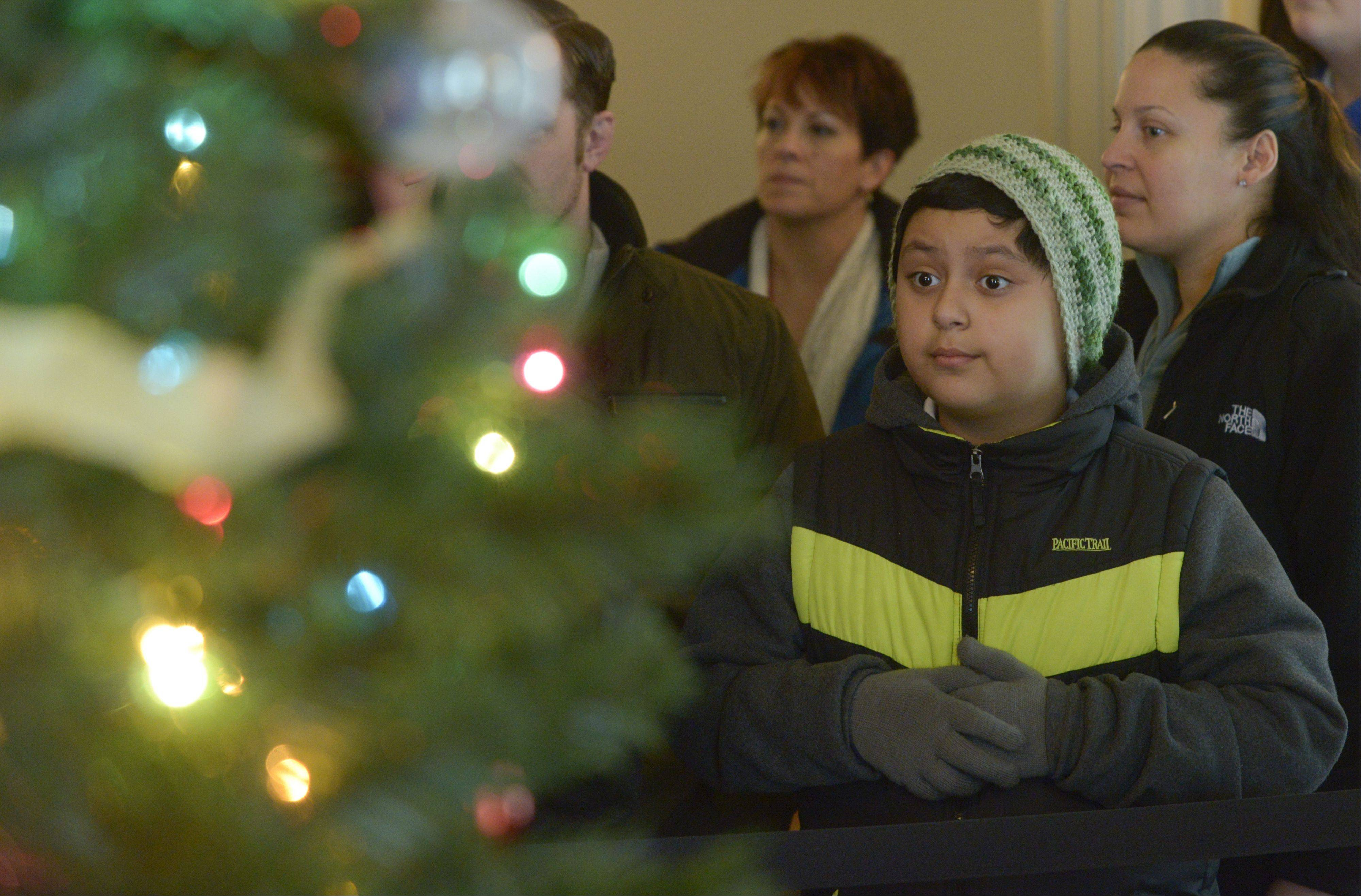 Devin Alarcon, 12, views one of the seven decorated Christmas trees on display Tuesday in the Robert R. McCormick Museum in Wheaton's Cantigny Park.