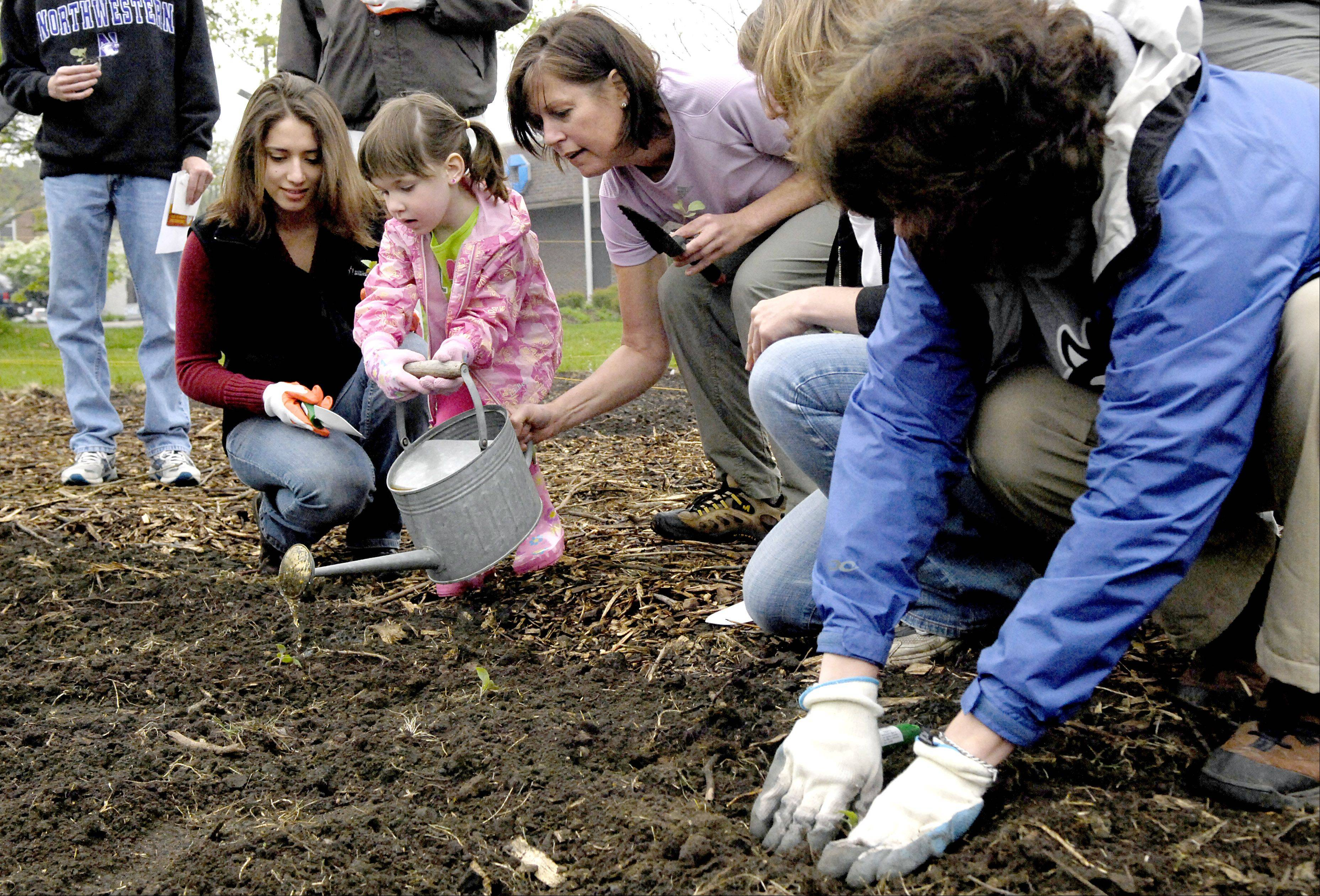 Batavia considering moving its community garden