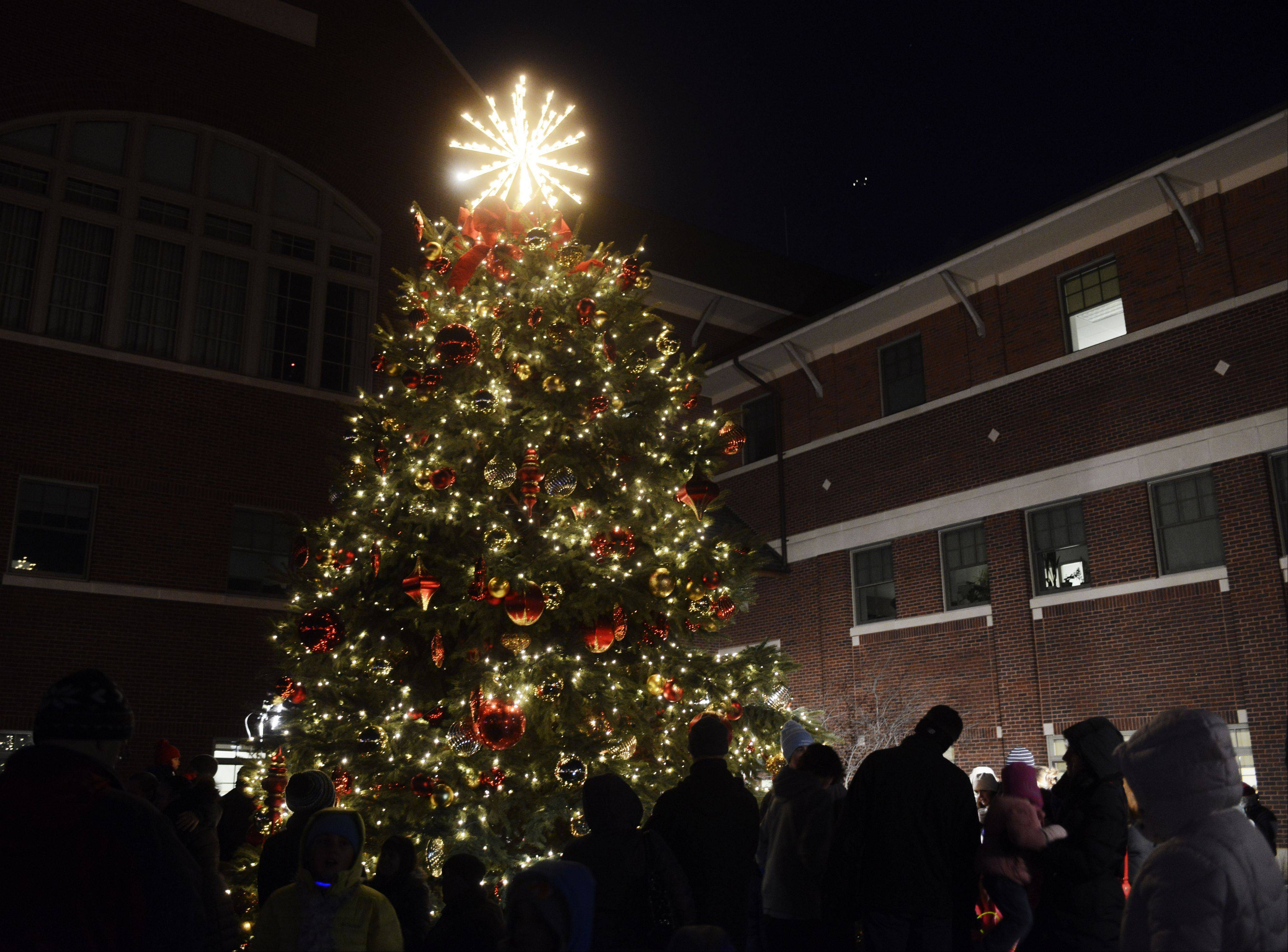 JOE LEWNARD/jlewnard@dailyherald.comPeople gather around the Christmas tree Wednesday outside Mount Prospect's village hall.