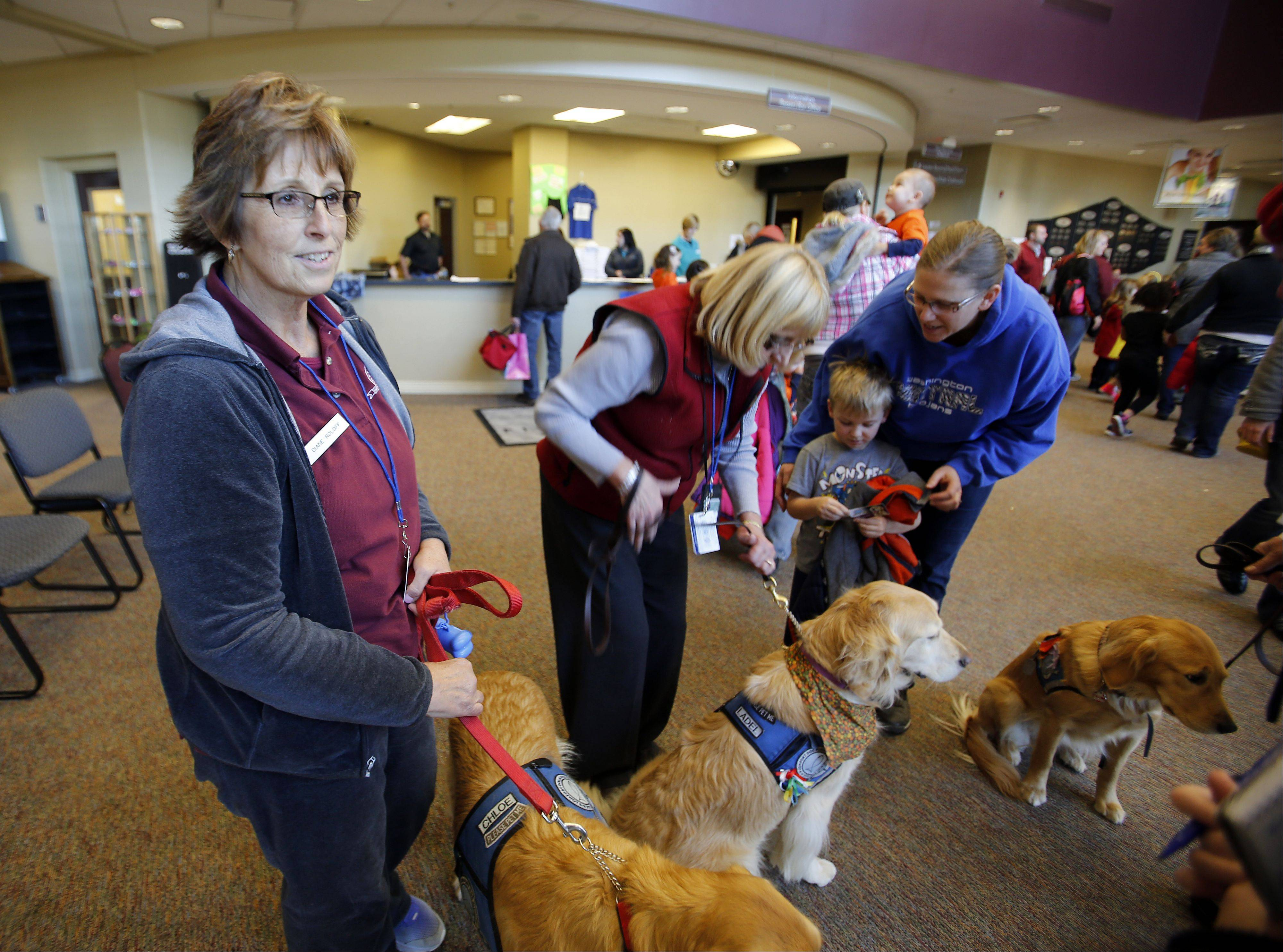 Diane Roloff of St. Charles brought her comfort dog Chloe to Five Points in Washington, Ill., Sunday to provide relief to residents coping with the devastation of a Nov. 16 tornado. She is one of many suburban residents who have traveled to Washington over the last week to help in the community's recovery.
