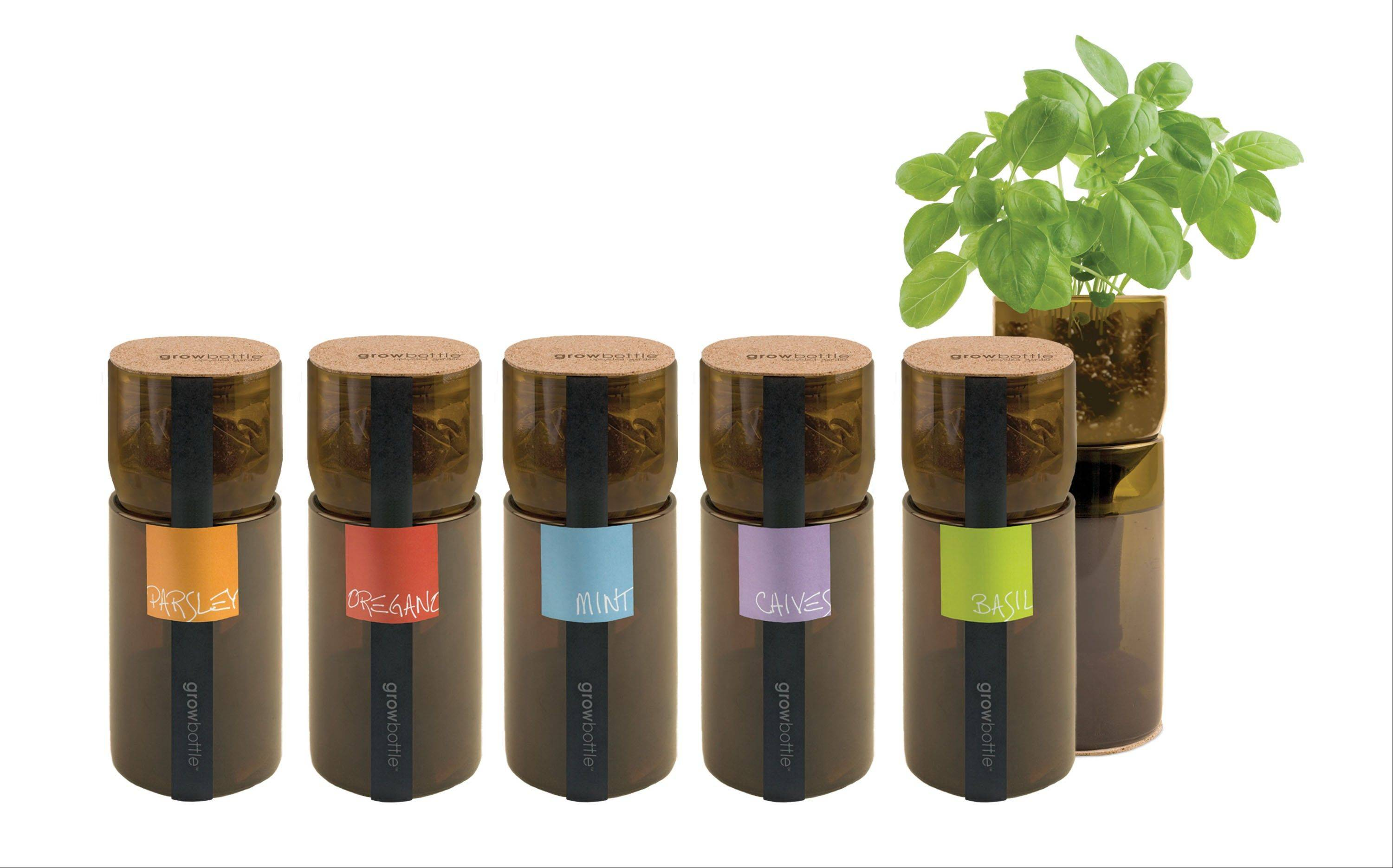 Try a unique gift for the wine-lover in your life. These grow bottles for herbs are made from reclaimed wine bottles.